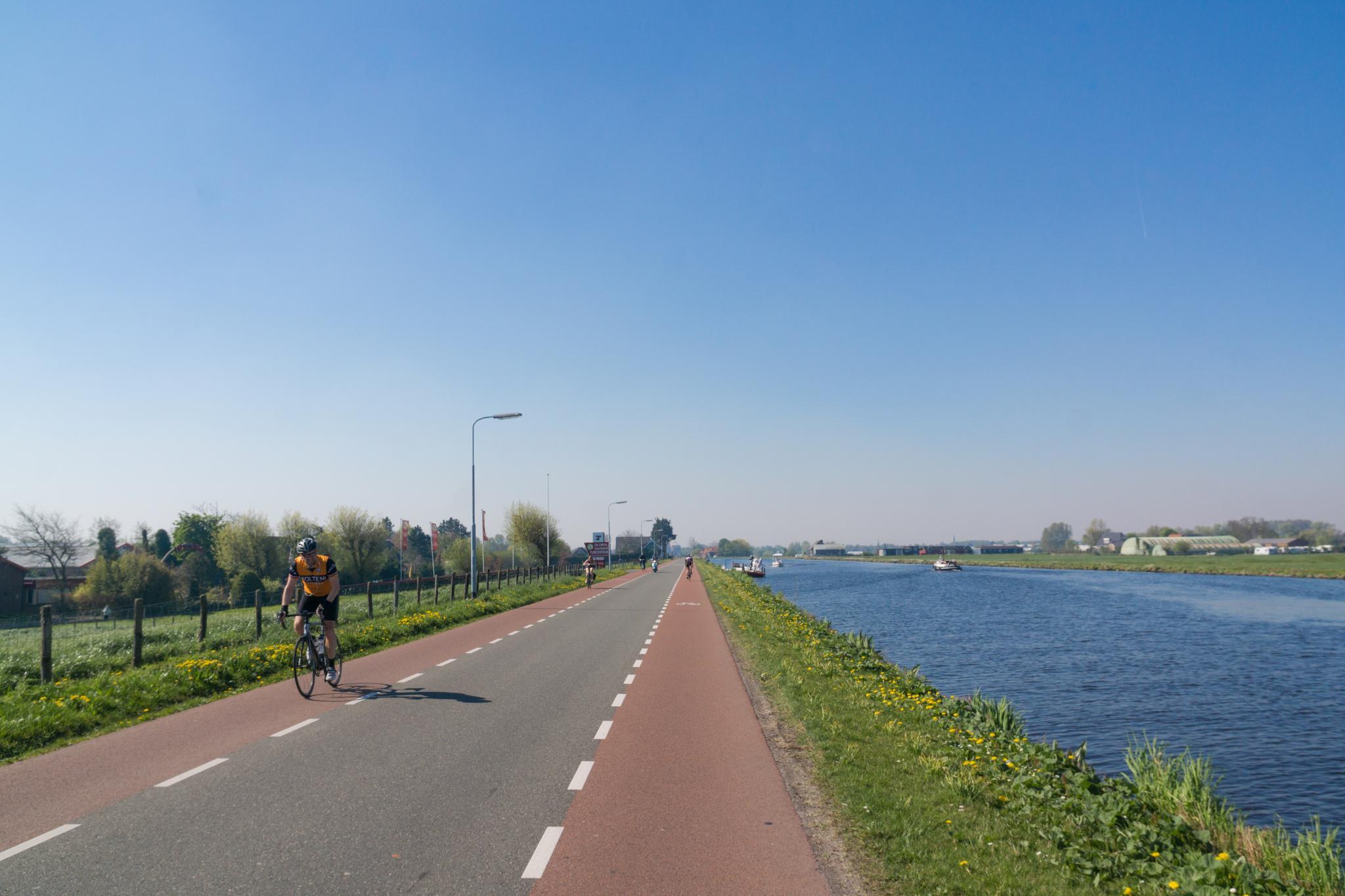 【荷蘭印象】花田嬉事:荷蘭單車花之路 5