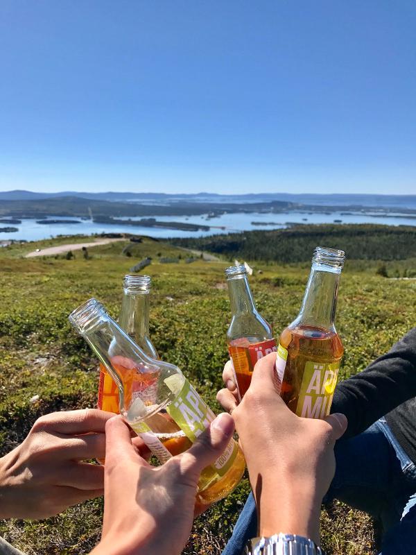 【北歐景點】Arjeplog Galtispuoda:眺望無盡延綿的瑞典極圈荒原 38