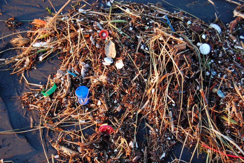 塑膠垃圾。圖片來源:Kevin Krejci(CC BY 2.0)
