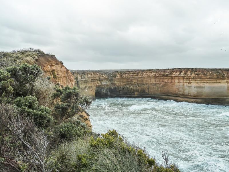 【澳洲】Great Ocean Road 壯闊絕美的南澳大洋路 32