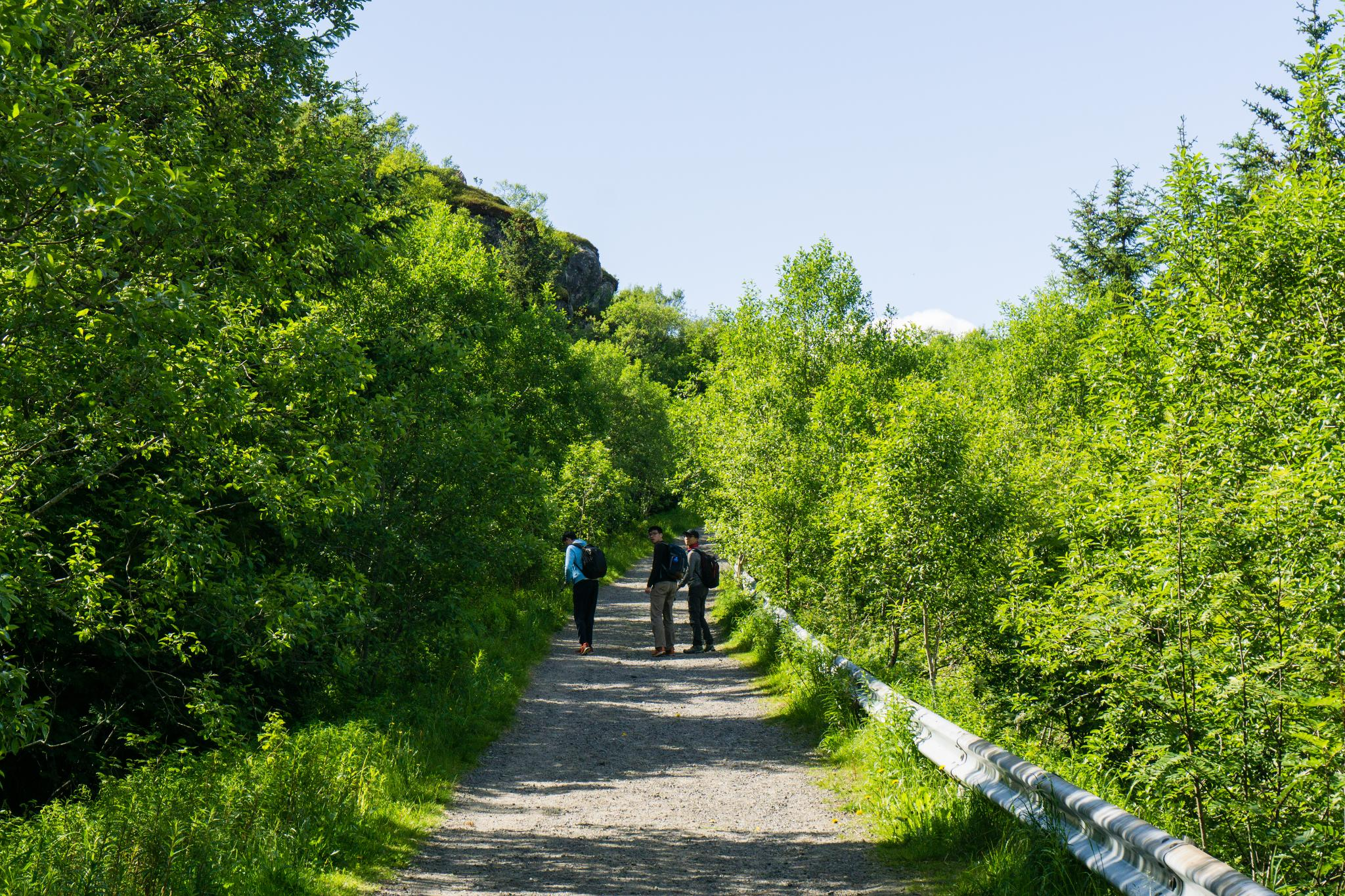【羅弗敦群島】一次眺望兩個小鎮的人氣健行路線 - Tjeldbergtind Trail 3