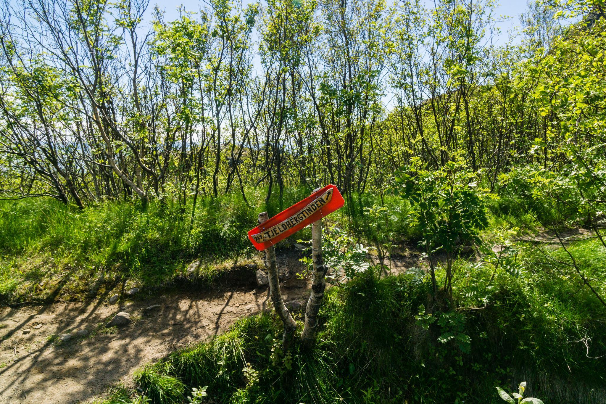 【羅弗敦群島】一次眺望兩個小鎮的人氣健行路線 - Tjeldbergtind Trail 5