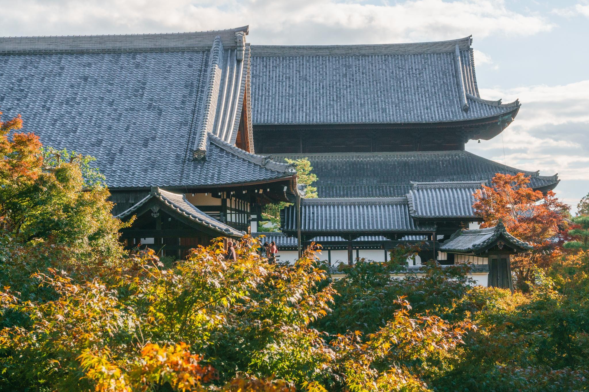 【京都】賞楓第一名所 - 楓葉之王 東福寺 74