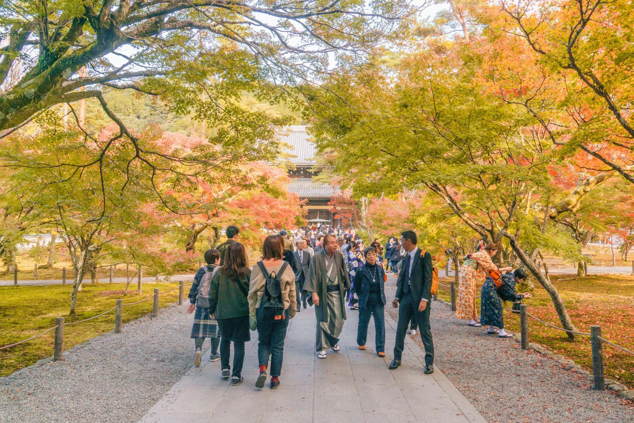 【京都】秋光葉影的古寺散策 - 南禪寺 81