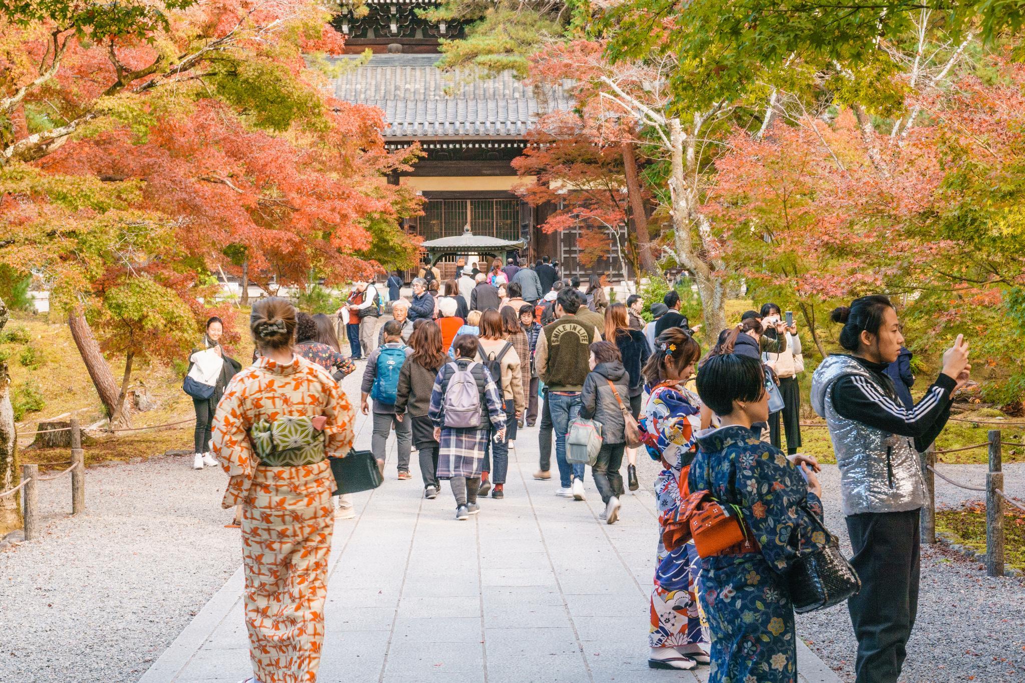 【京都】秋光葉影的古寺散策 - 南禪寺 82