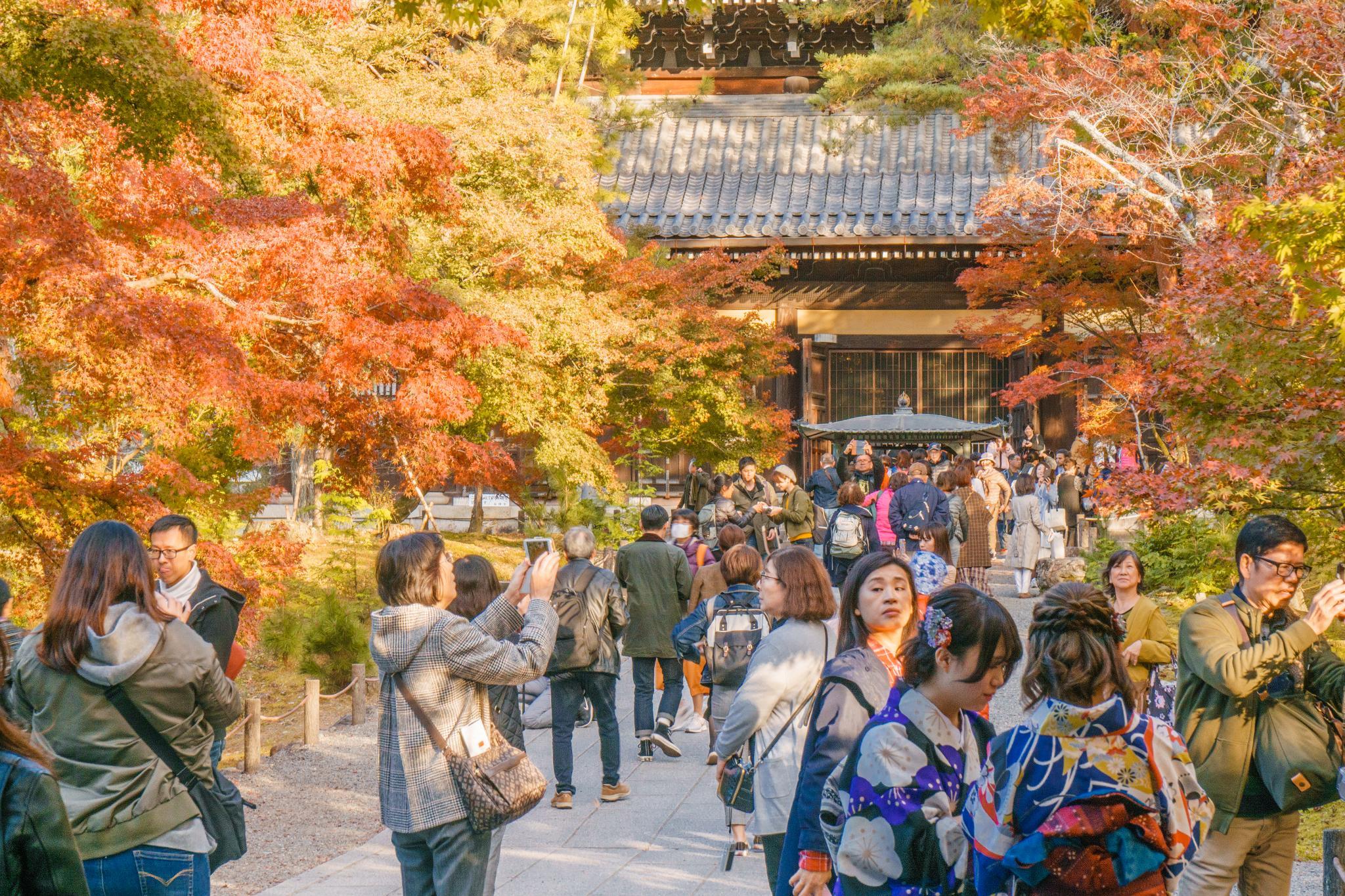 【京都】秋光葉影的古寺散策 - 南禪寺 83
