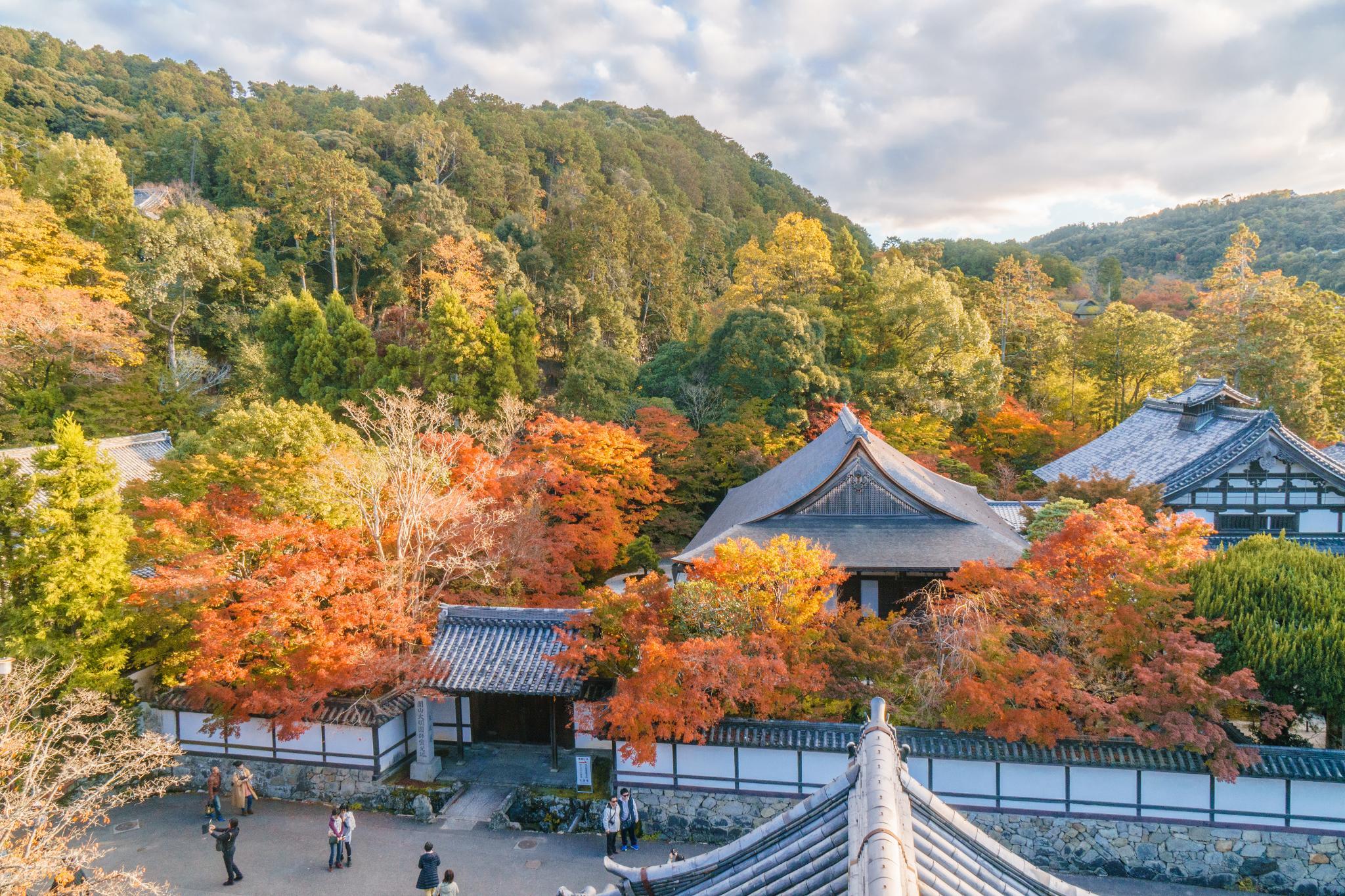 【京都】秋光葉影的古寺散策 - 南禪寺 93