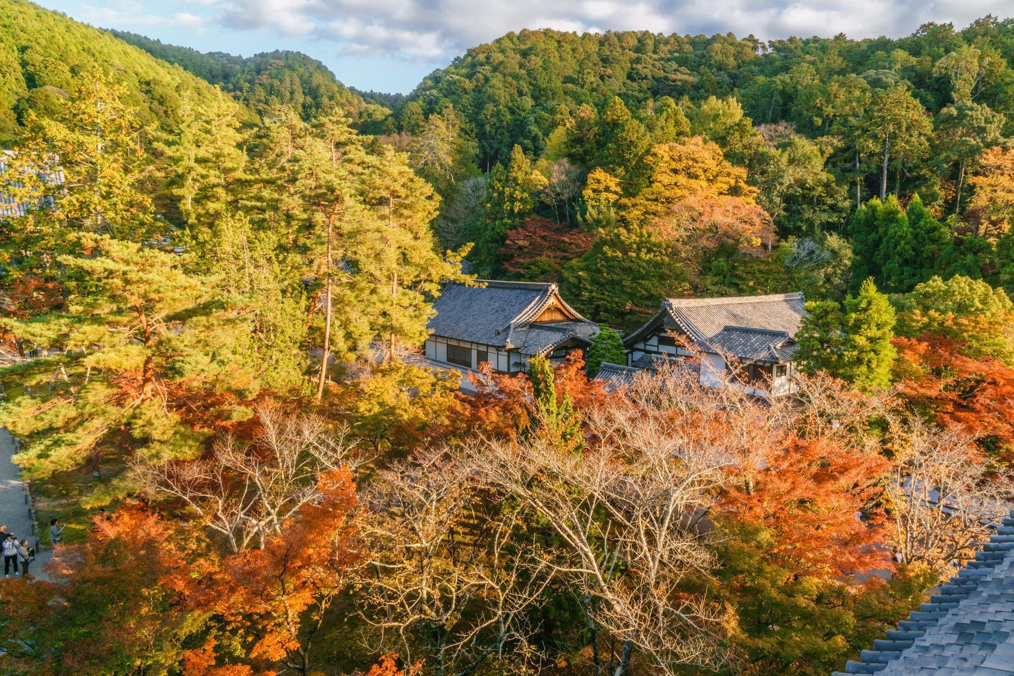 【京都】秋光葉影的古寺散策 - 南禪寺 94