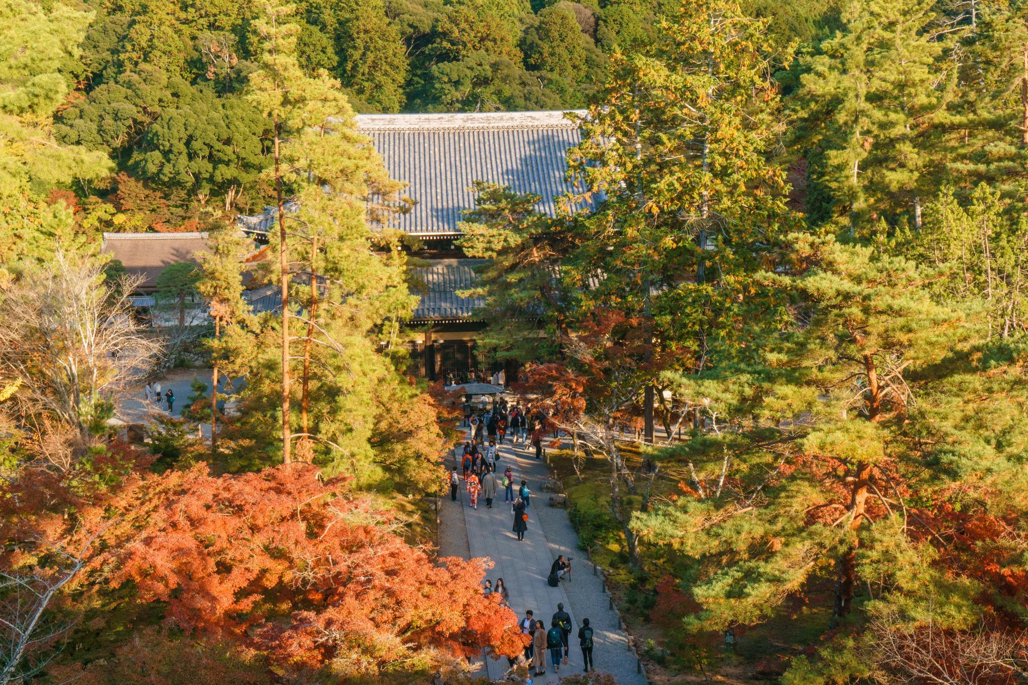 【京都】秋光葉影的古寺散策 - 南禪寺 96