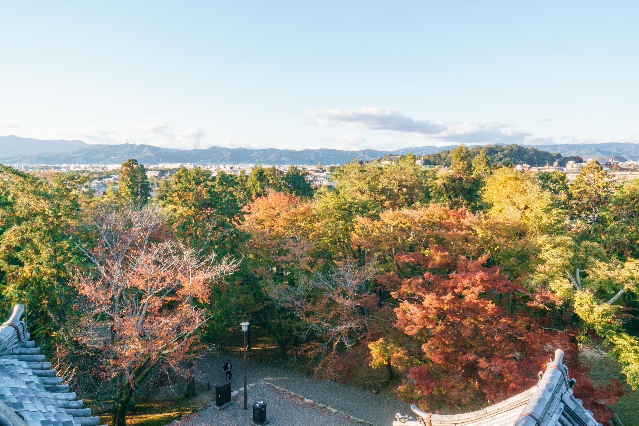 【京都】秋光葉影的古寺散策 - 南禪寺 98