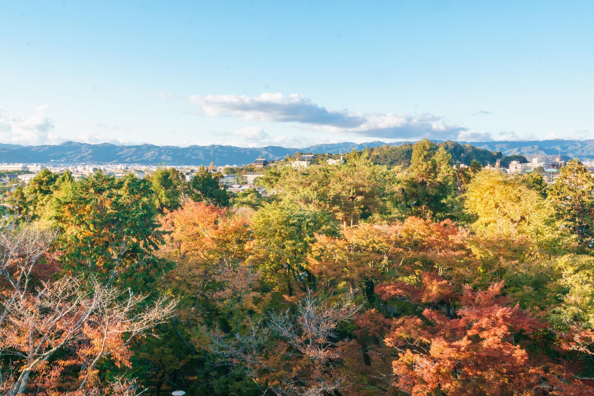 【京都】秋光葉影的古寺散策 - 南禪寺 99