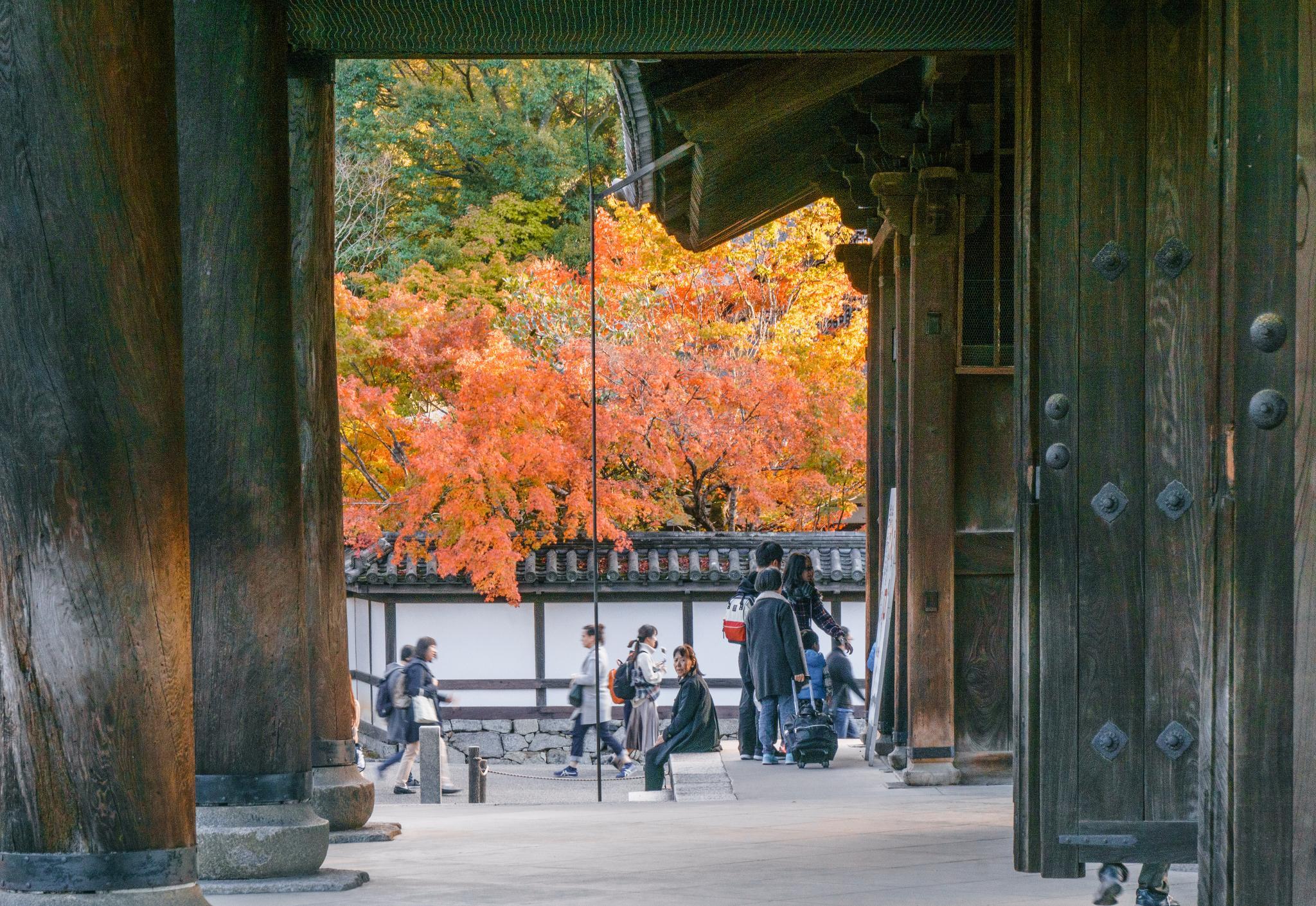 【京都】秋光葉影的古寺散策 - 南禪寺 100