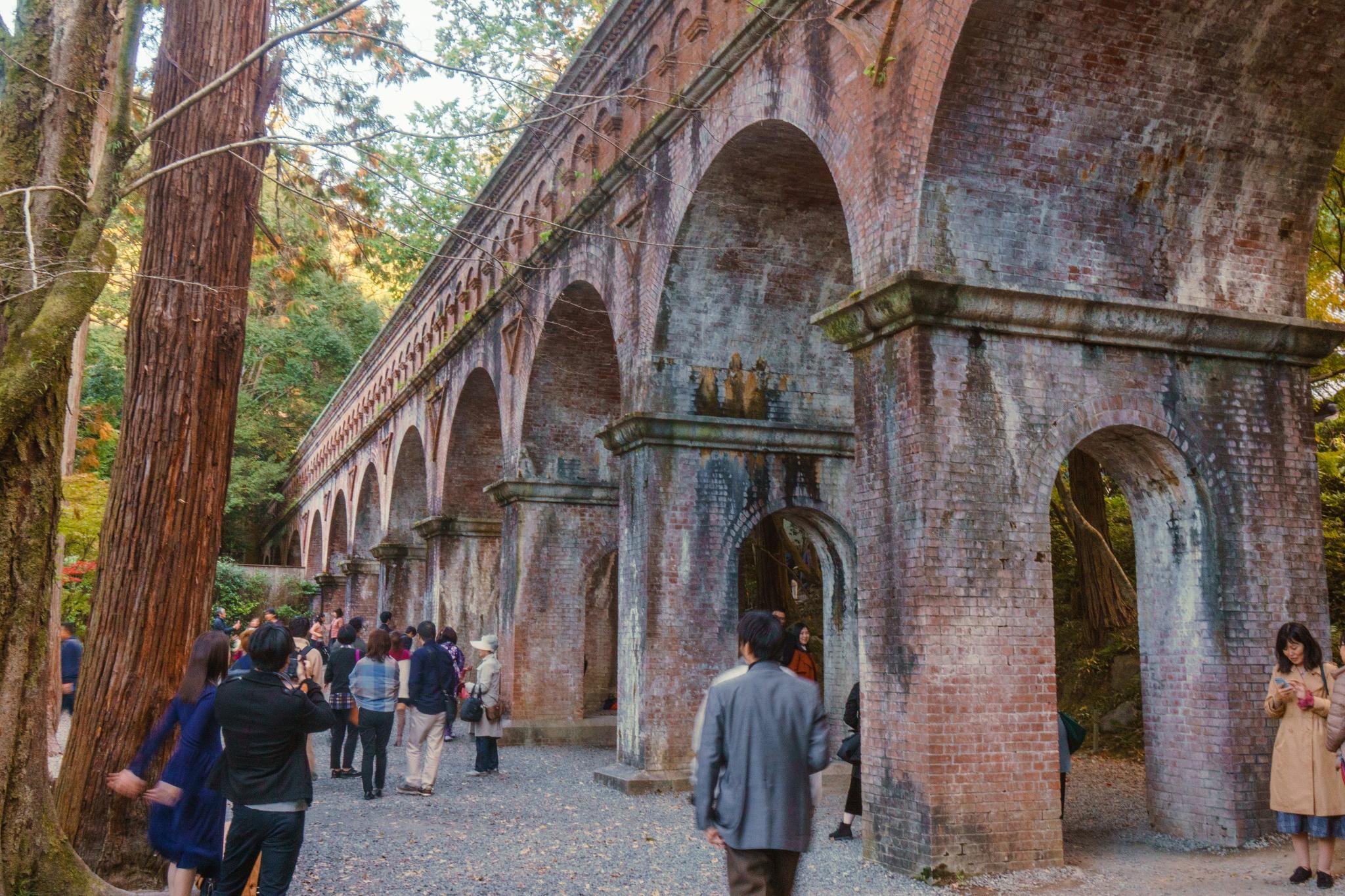 【京都】秋光葉影的古寺散策 - 南禪寺 104