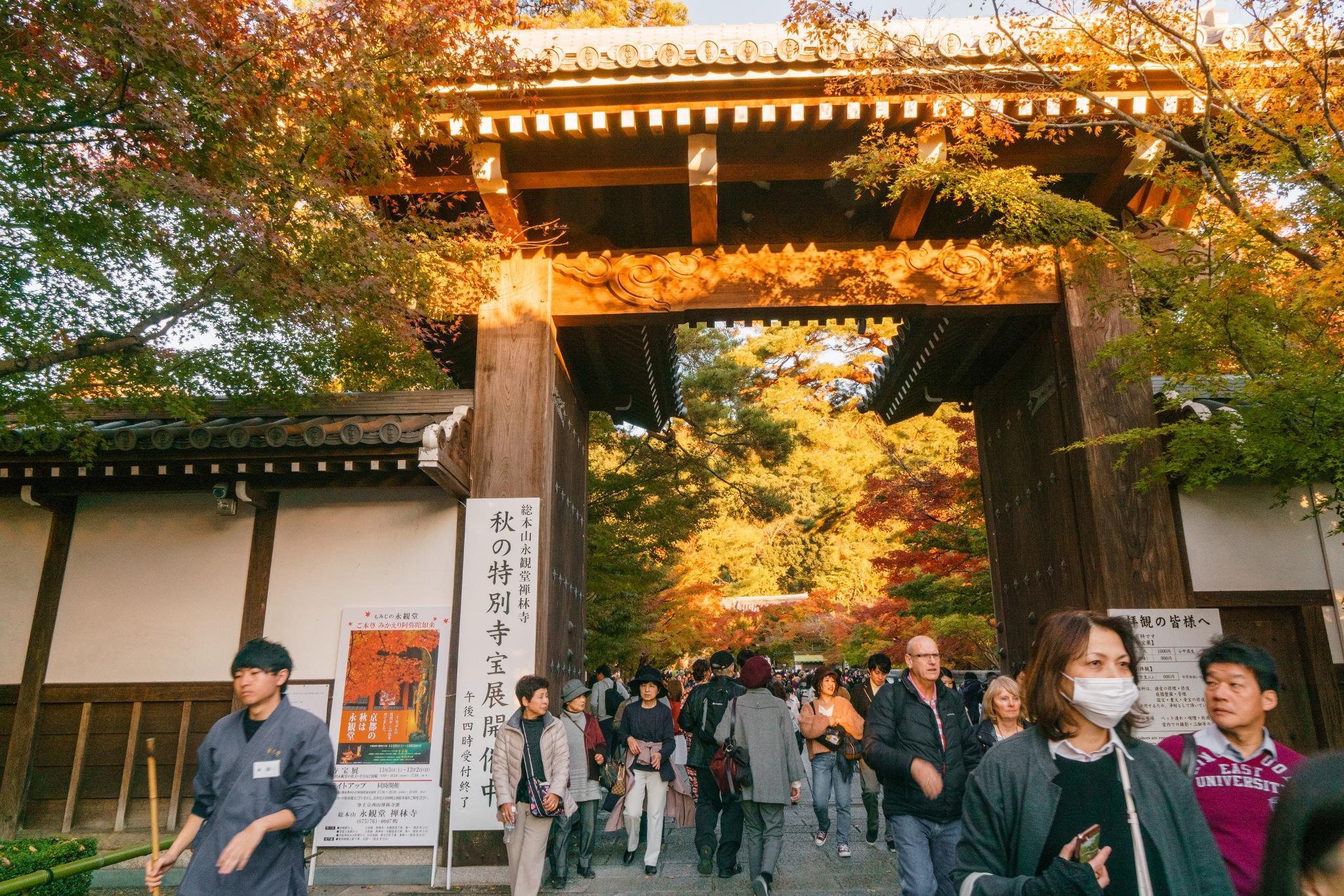 【京都】此生必來的紅葉狩絕景 - 永觀堂夜楓 98