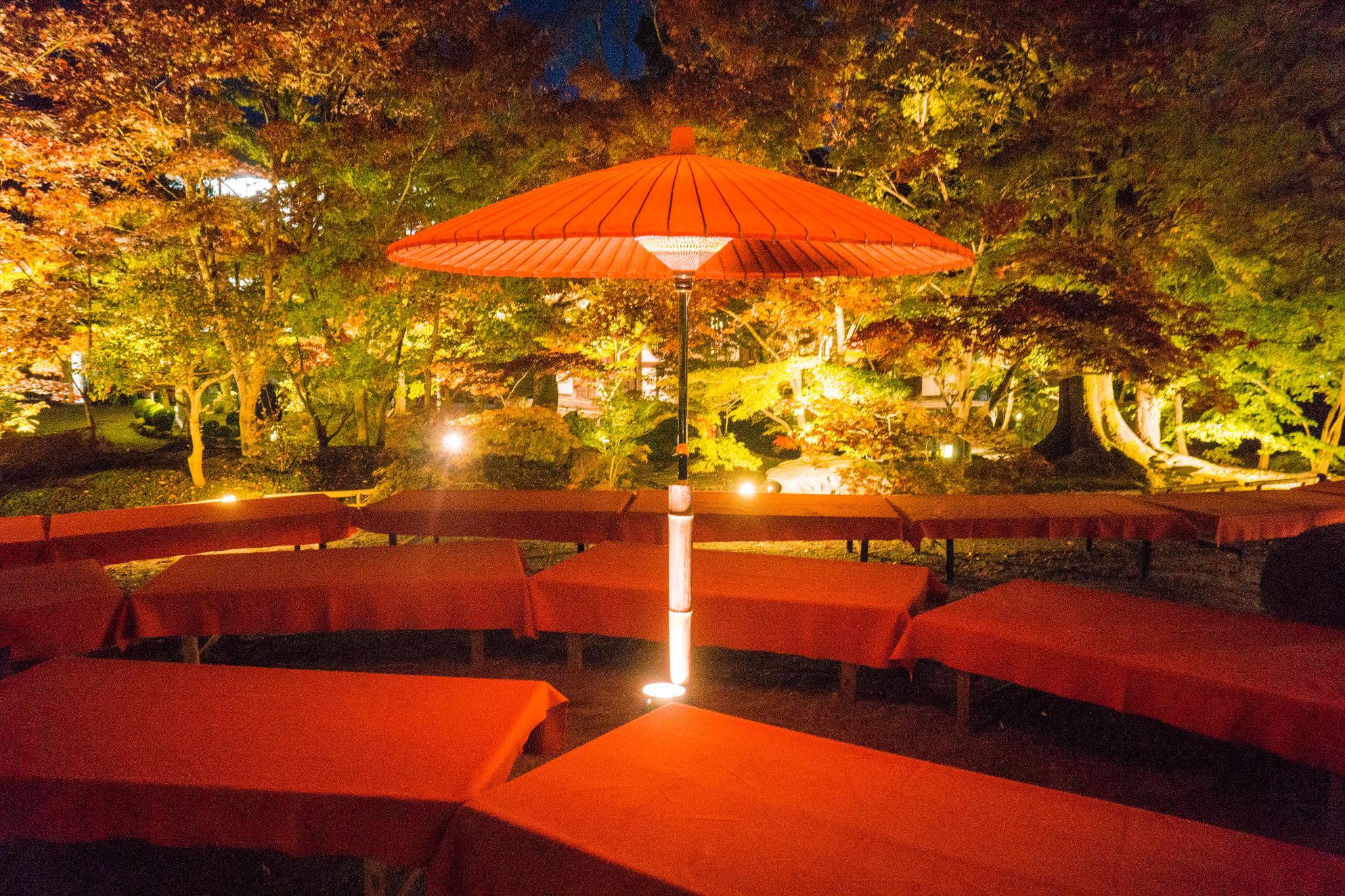【京都】此生必來的紅葉狩絕景 - 永觀堂夜楓 117