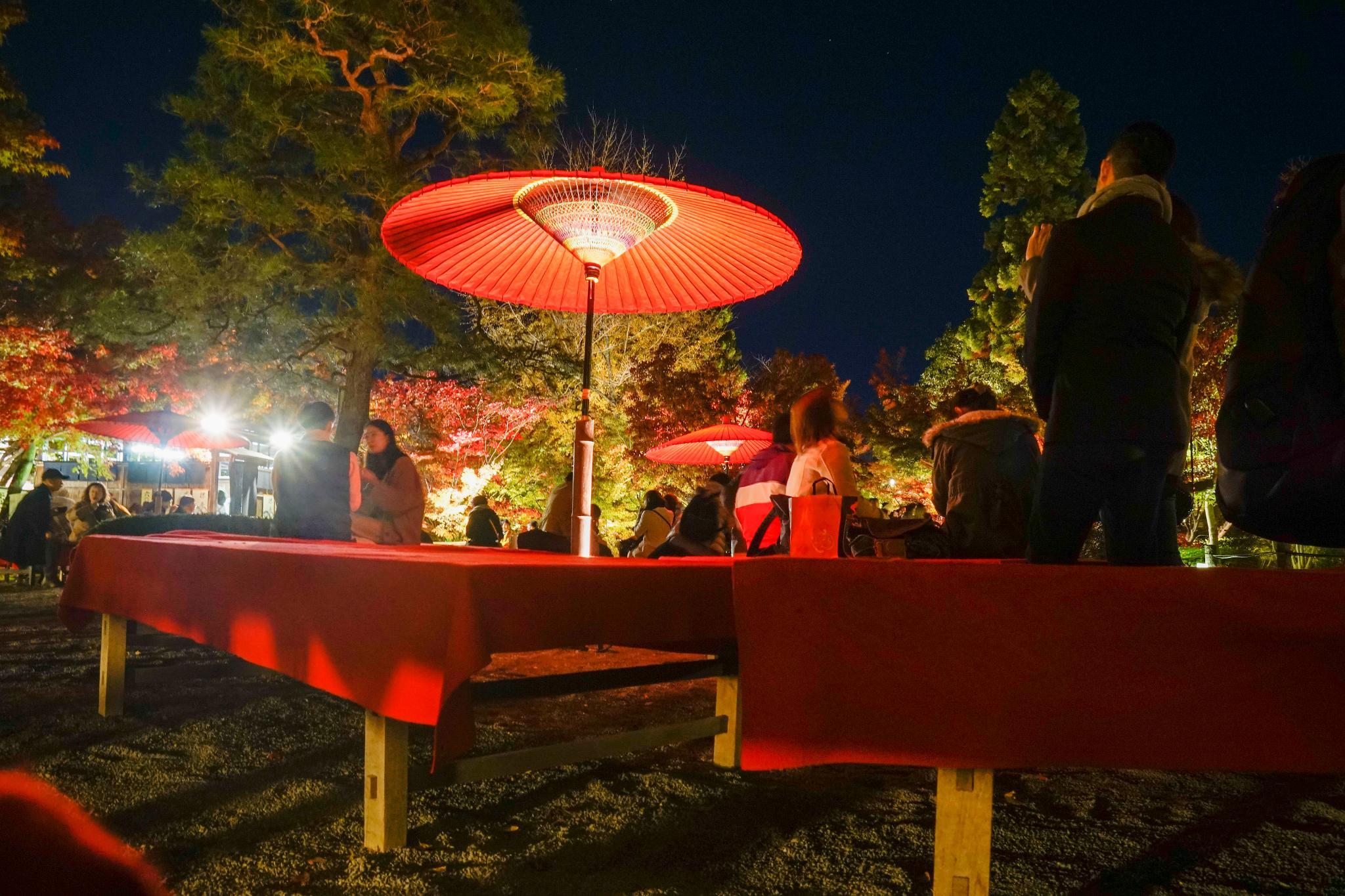 【京都】此生必來的紅葉狩絕景 - 永觀堂夜楓 118