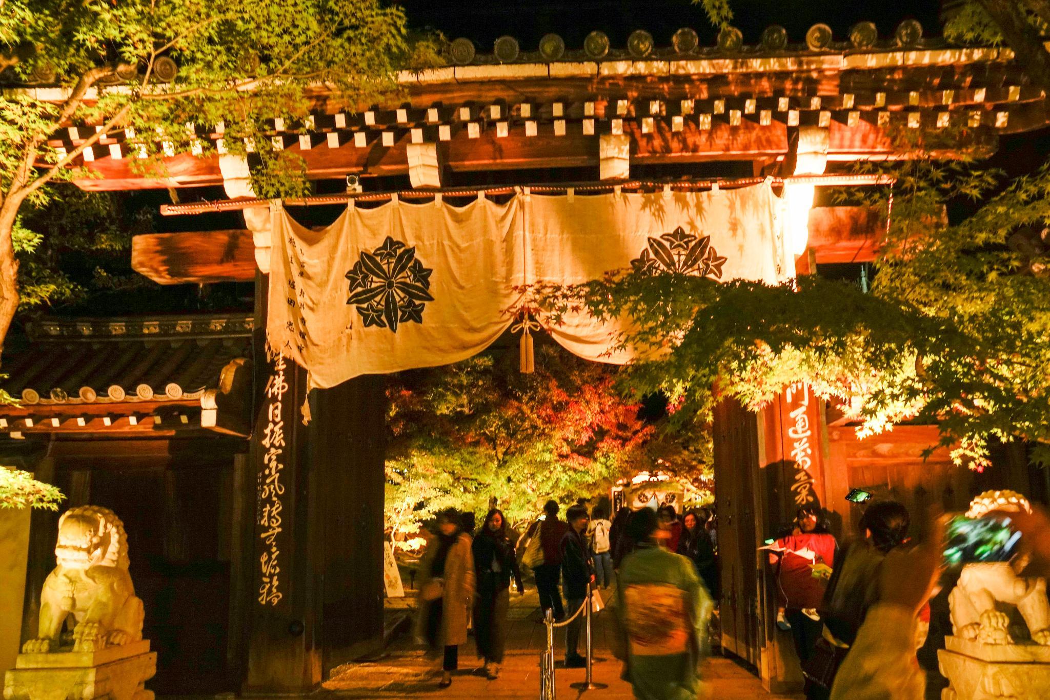 【京都】此生必來的紅葉狩絕景 - 永觀堂夜楓 132