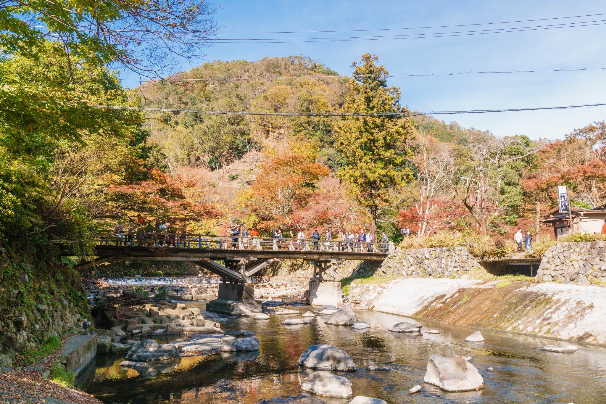 【京都】如夢似幻的琉璃光影 - 八瀨琉璃光院 66