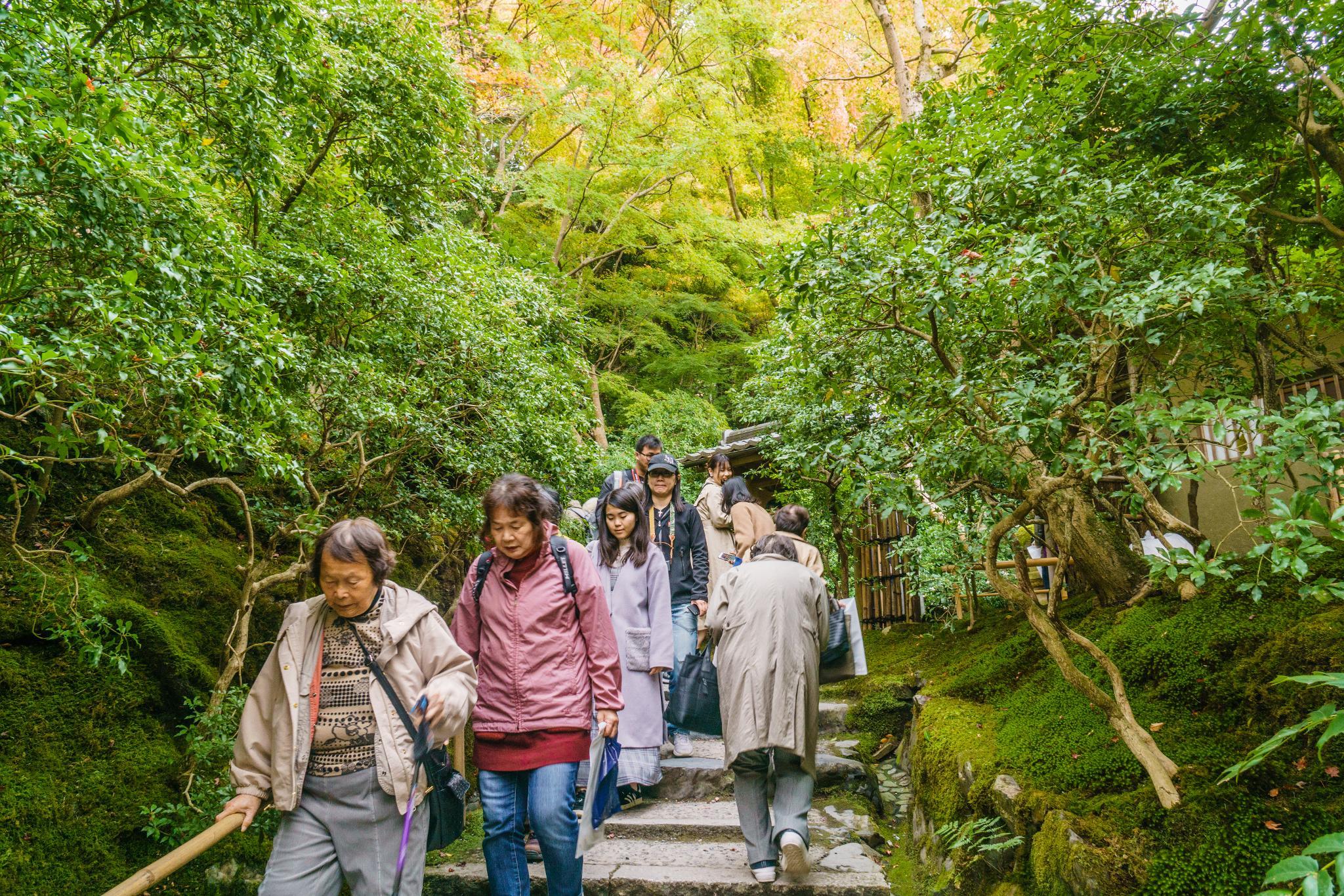 【京都】如夢似幻的琉璃光影 - 八瀨琉璃光院 79