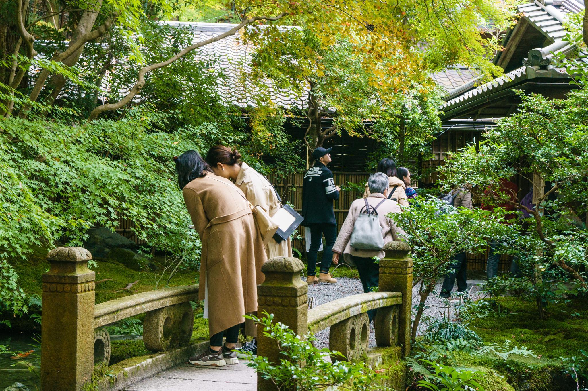 【京都】如夢似幻的琉璃光影 - 八瀨琉璃光院 84