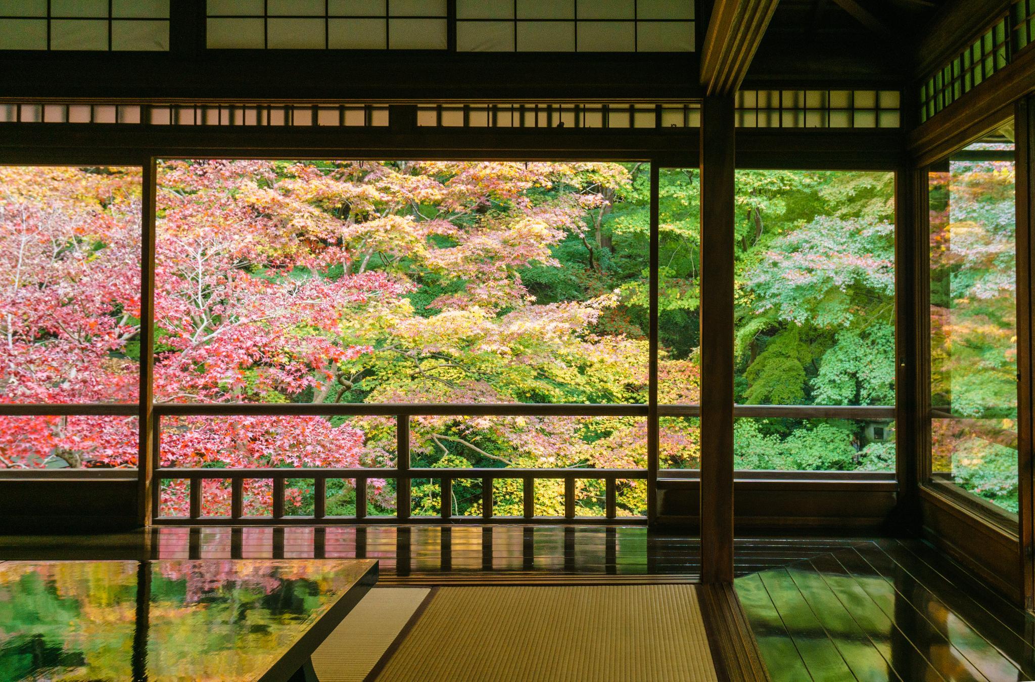 【京都】如夢似幻的琉璃光影 - 八瀨琉璃光院 88