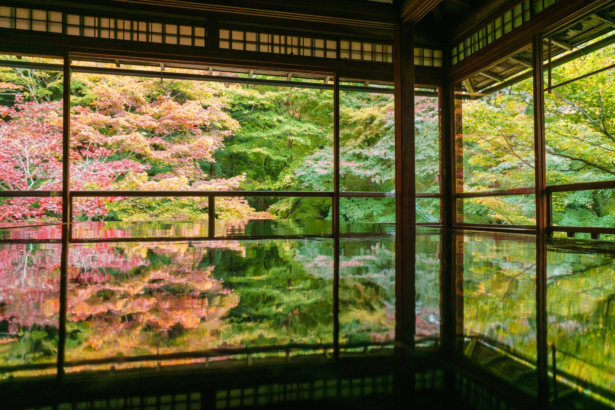 【京都】如夢似幻的琉璃光影 - 八瀨琉璃光院 90