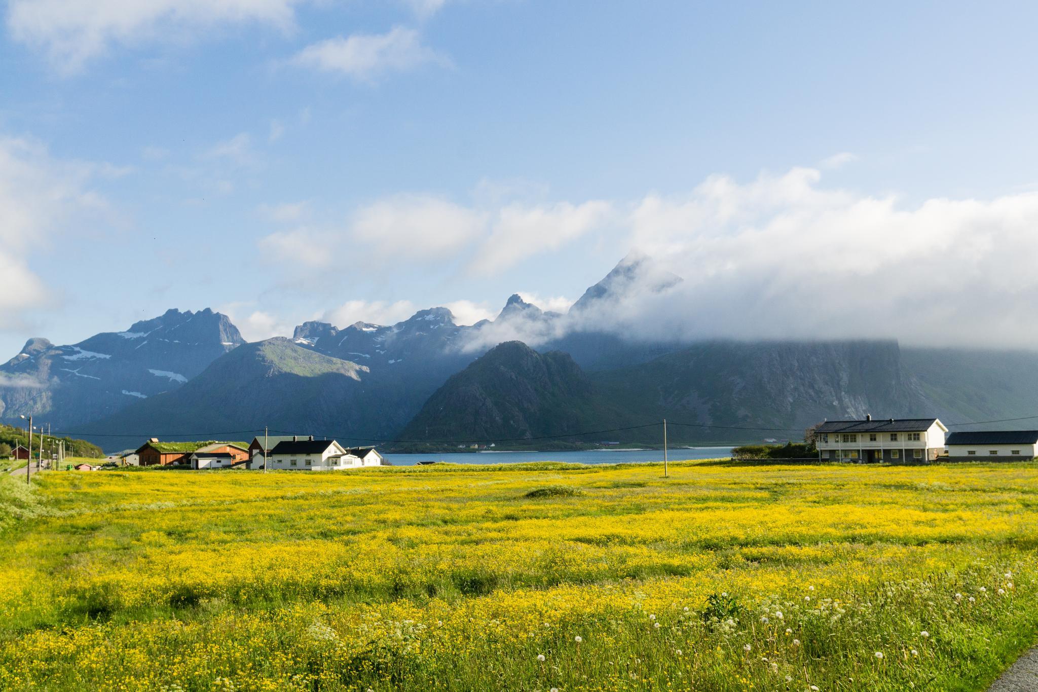 【羅弗敦群島】前進世界最美麗的島嶼 - Lofoten Islands 行程全攻略 19