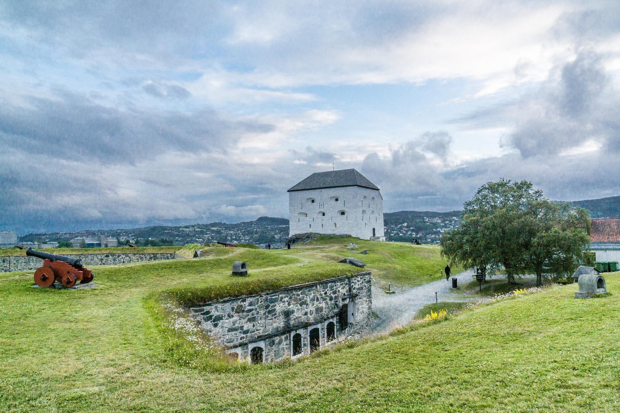 【北歐景點】拜訪維京王的千年古城 - Trondheim 特隆赫姆景點懶人包 4