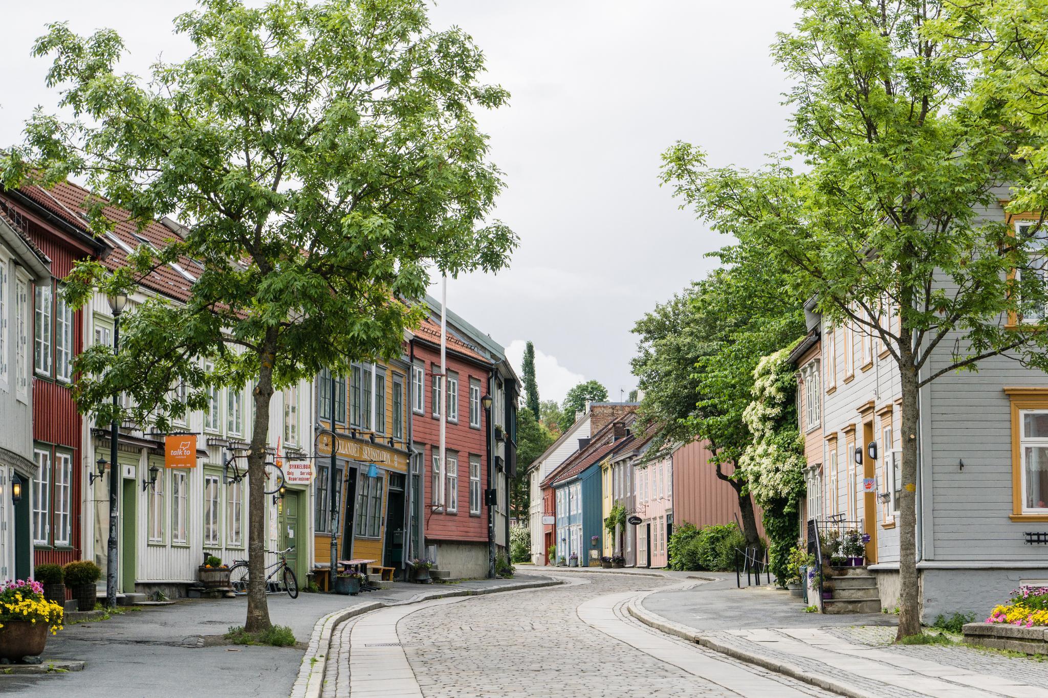 【北歐景點】拜訪維京王的千年古城 - Trondheim 特隆赫姆景點懶人包 41