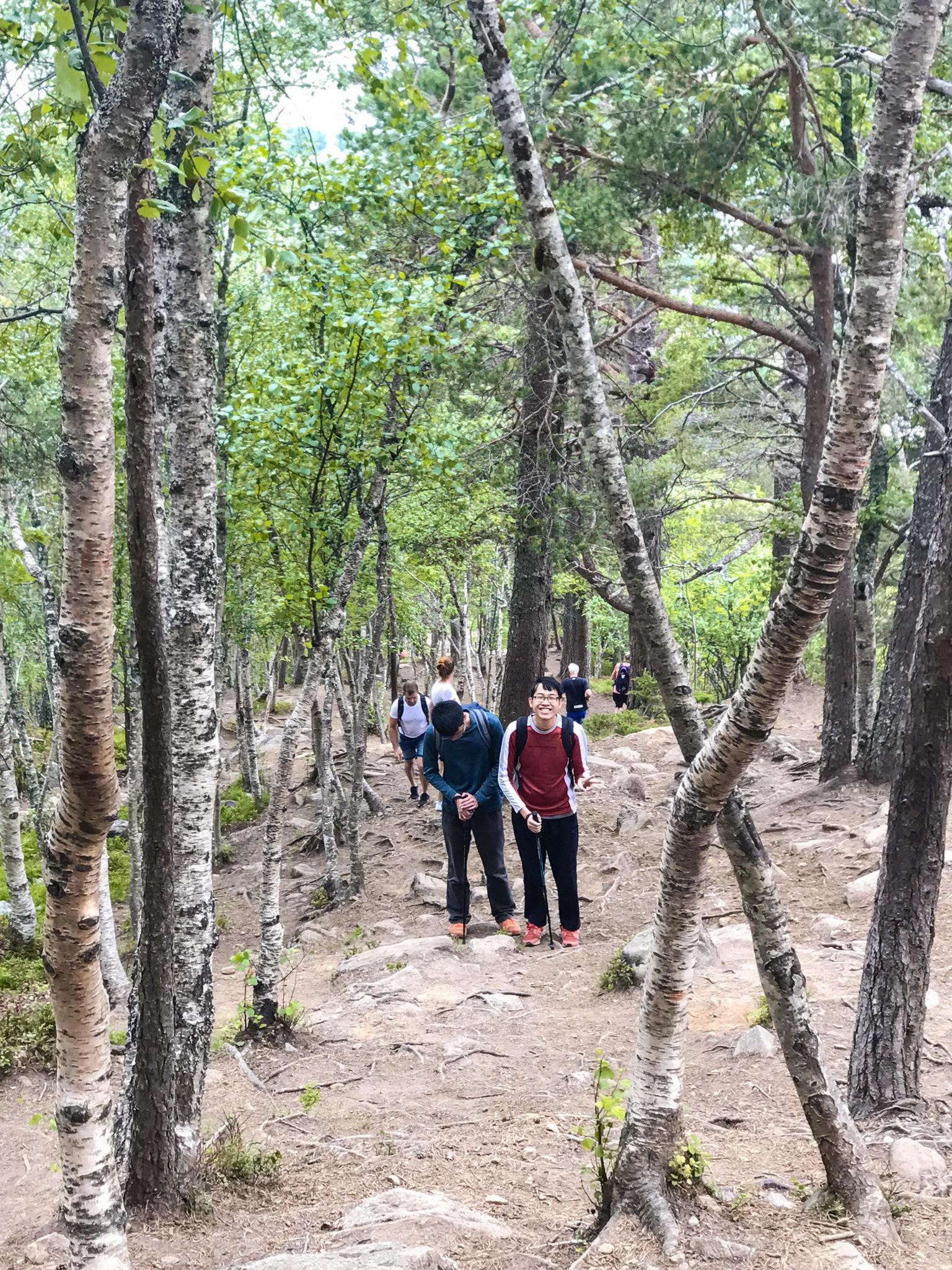 【北歐景點】峽灣區起點Åndalsnes健行 - 鳥瞰峽灣全景的Rampestreken觀景台 14