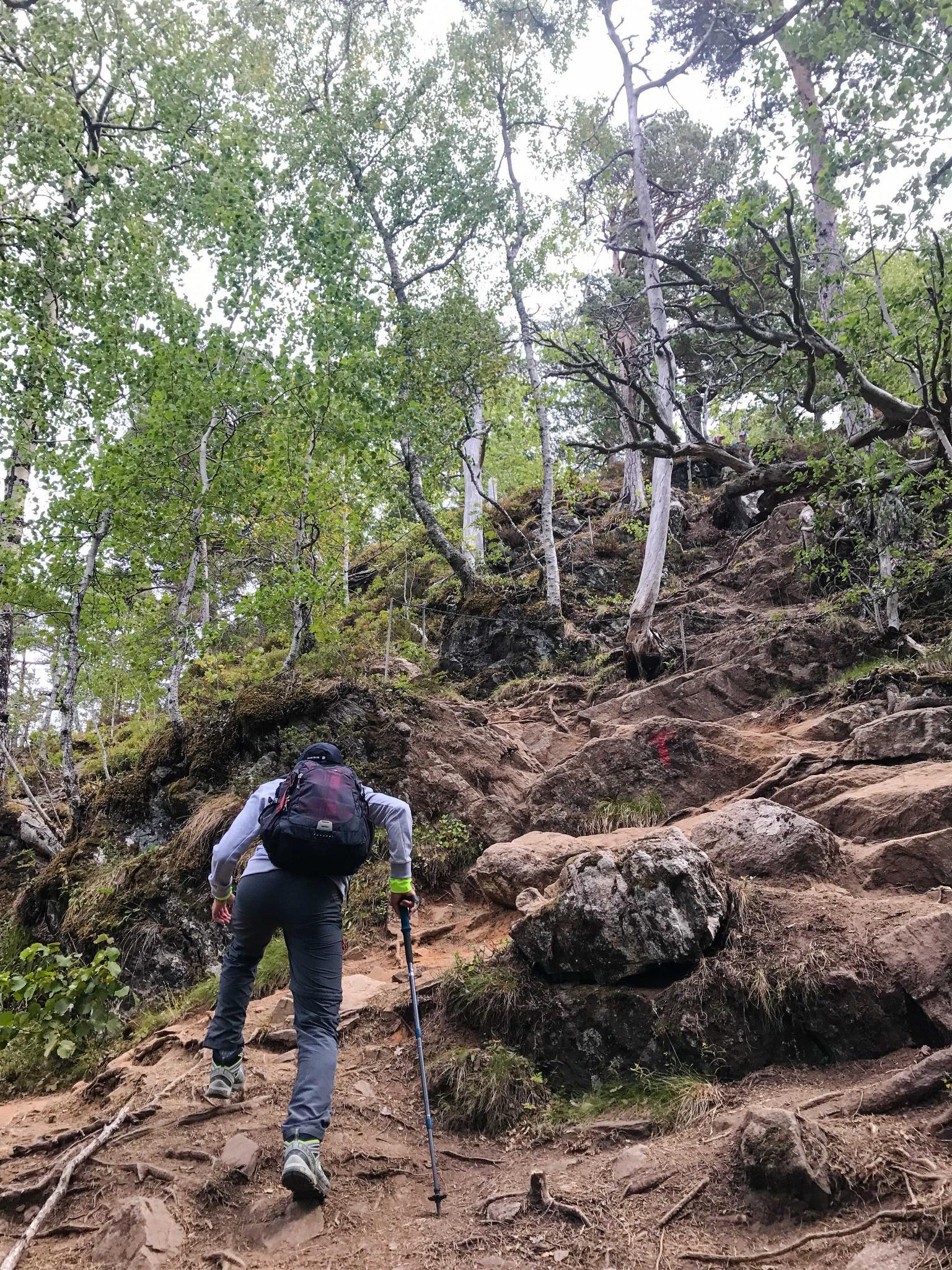【北歐景點】峽灣區起點Åndalsnes健行 - 鳥瞰峽灣全景的Rampestreken觀景台 13