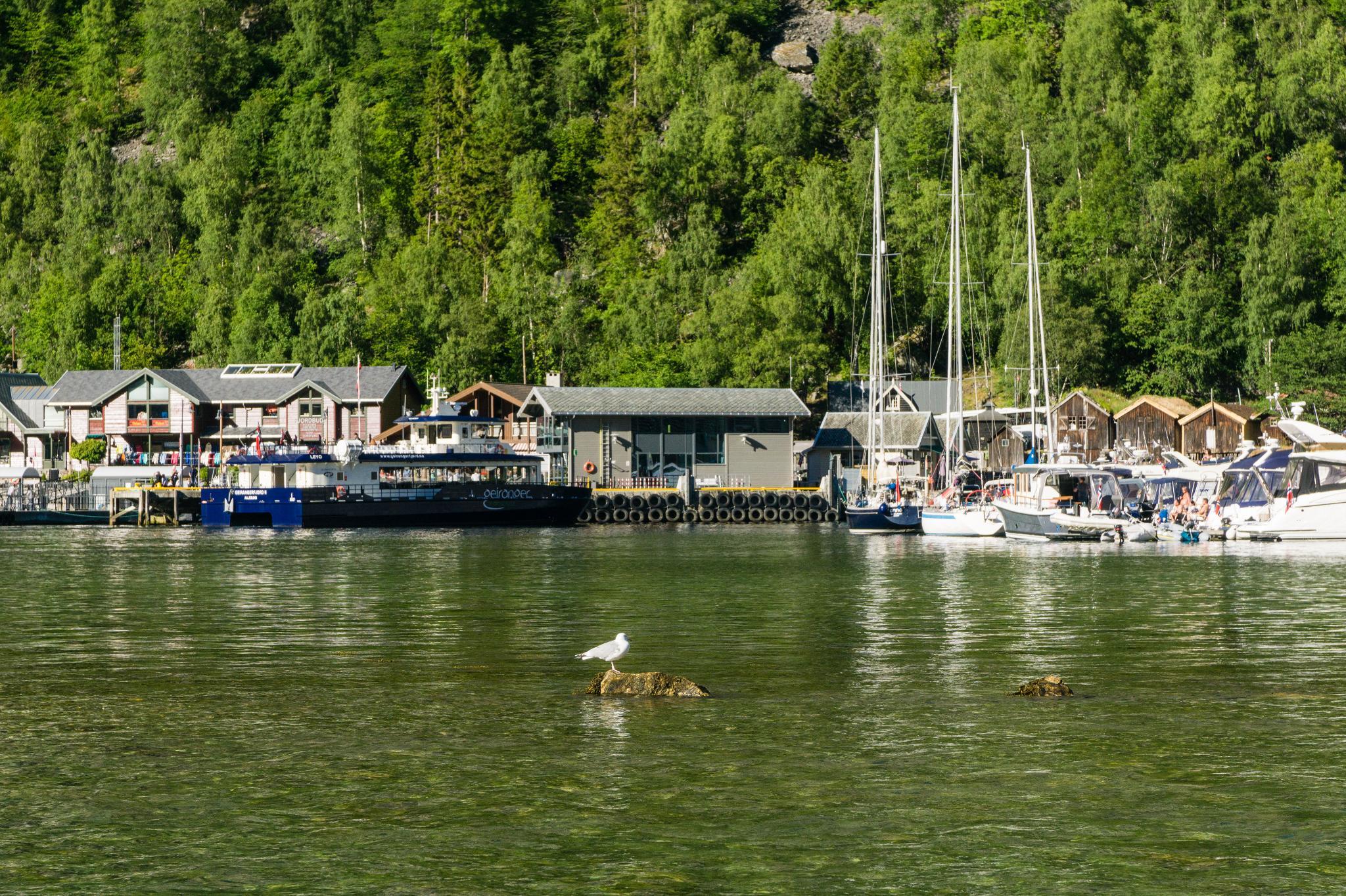 【北歐景點】Ørnesvingen 老鷹之路 ∣ 挪威世界遺產 — 蓋倫格峽灣景點總整理 23