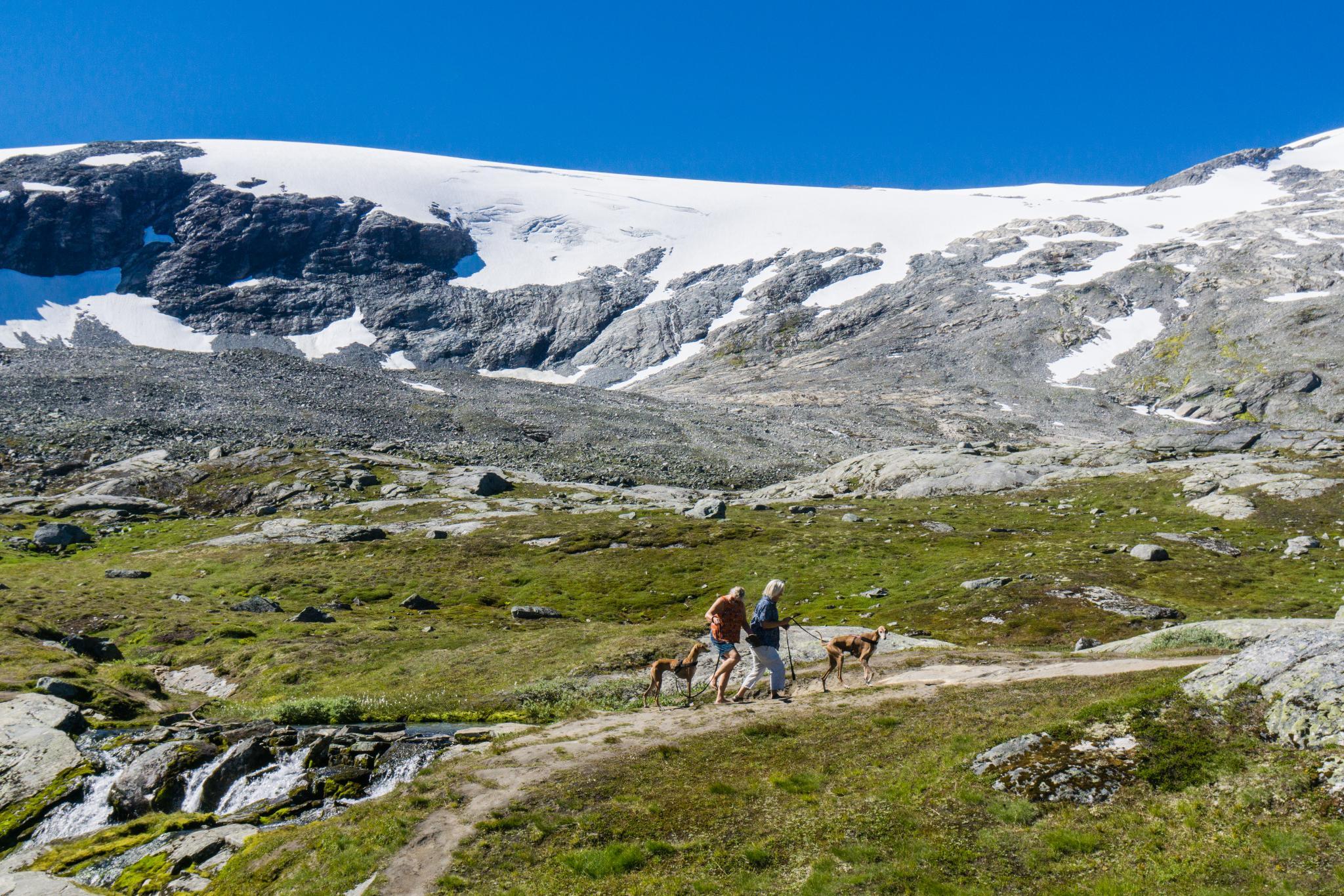 【北歐景點】歐洲最震撼的峽灣觀景台 — Dalsnibba Mountain Plateau 9