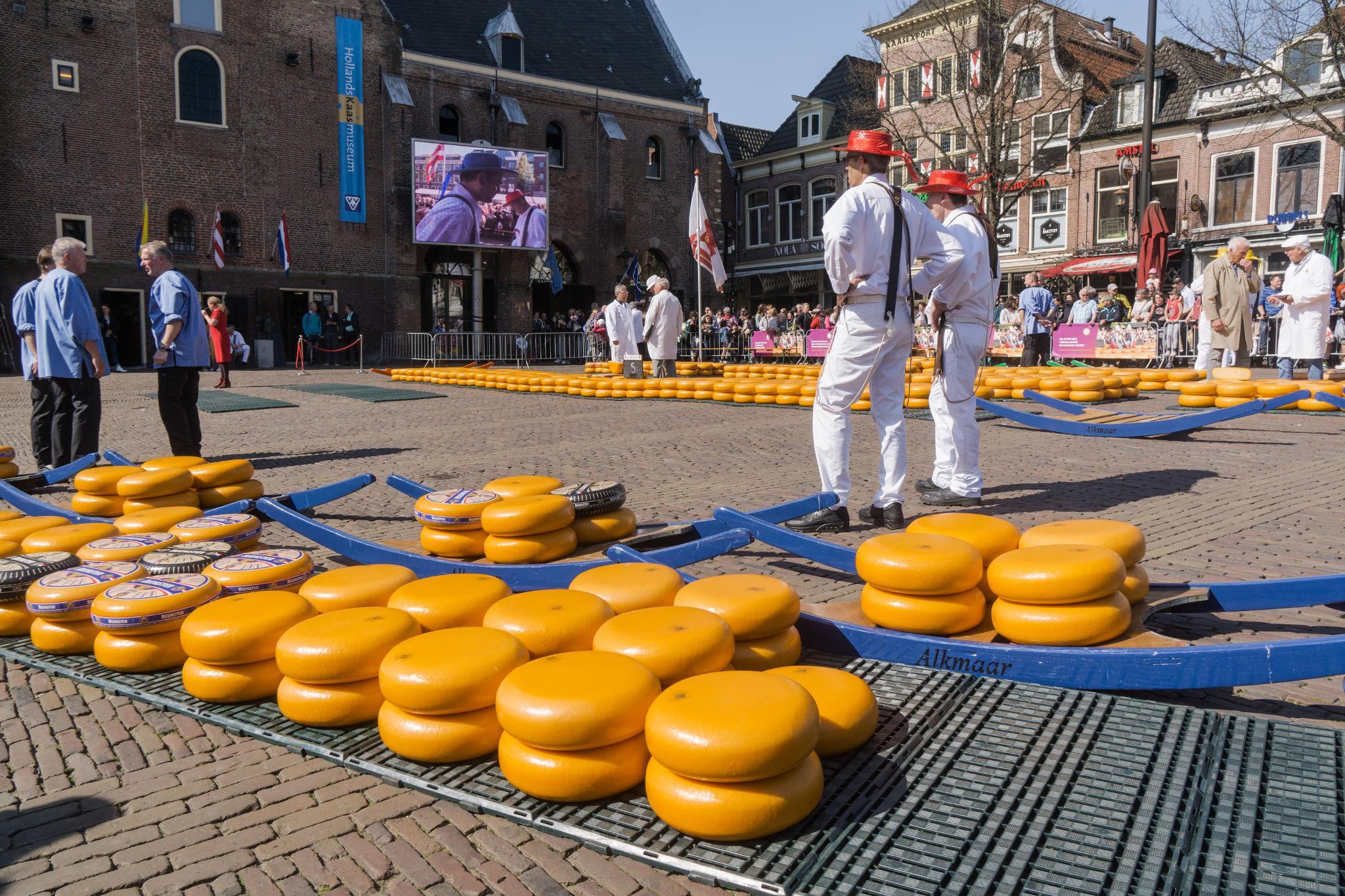【荷蘭印象】體驗道地的荷式風情 — Alkmaar 起司市集 散步路線整理 22
