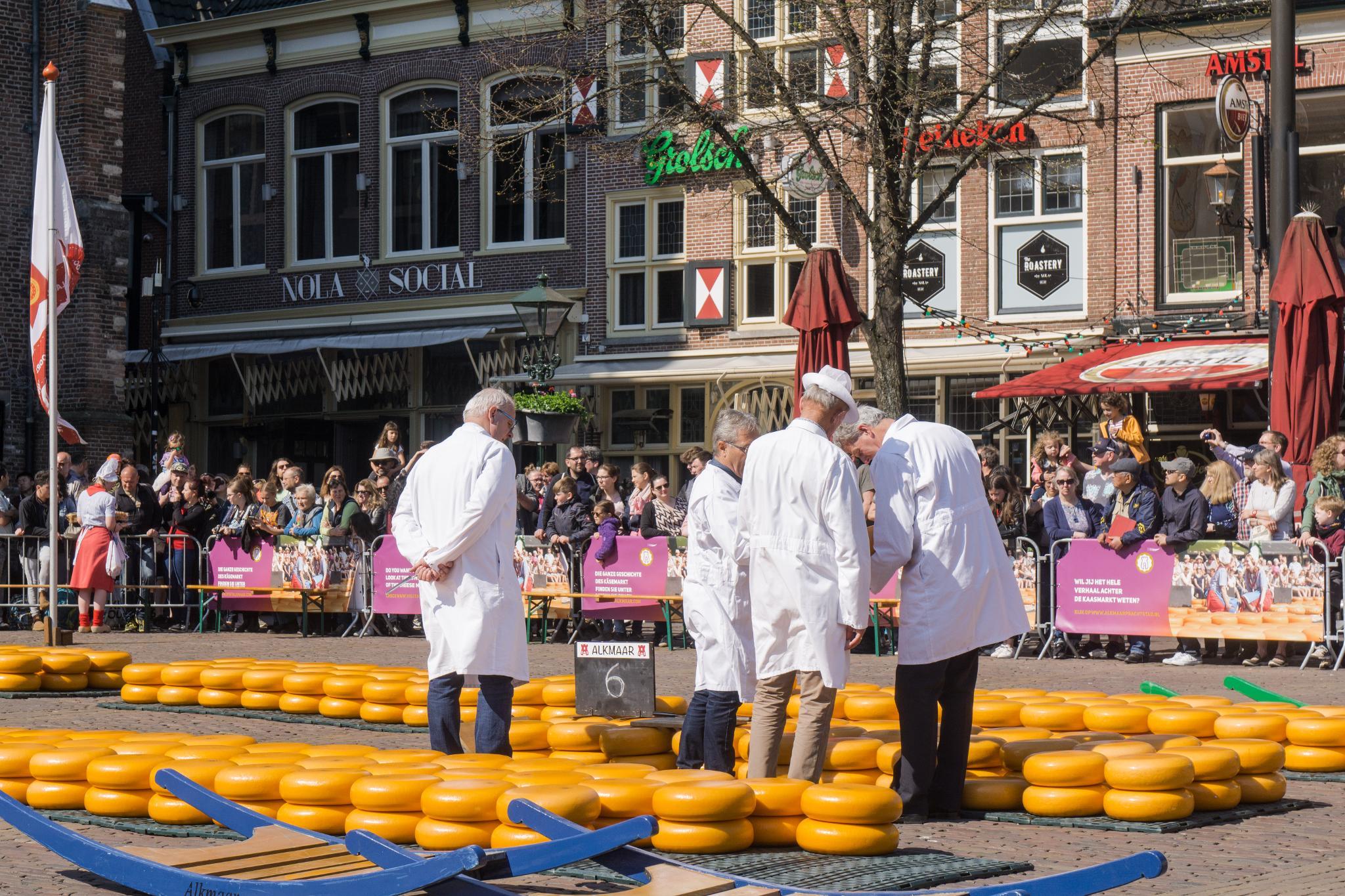 【荷蘭印象】體驗道地的荷式風情 — Alkmaar 起司市集 散步路線整理 20