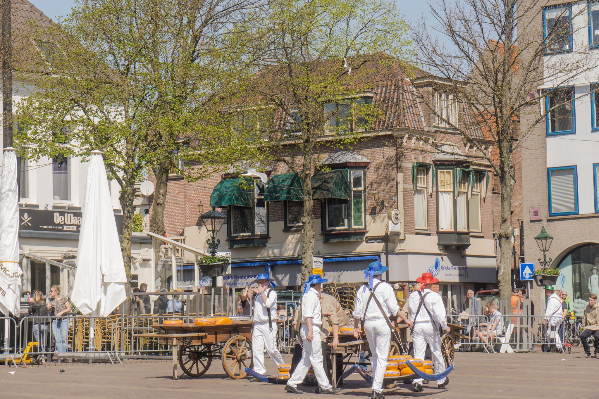 【荷蘭印象】體驗道地的荷式風情 — Alkmaar 起司市集 散步路線整理 26