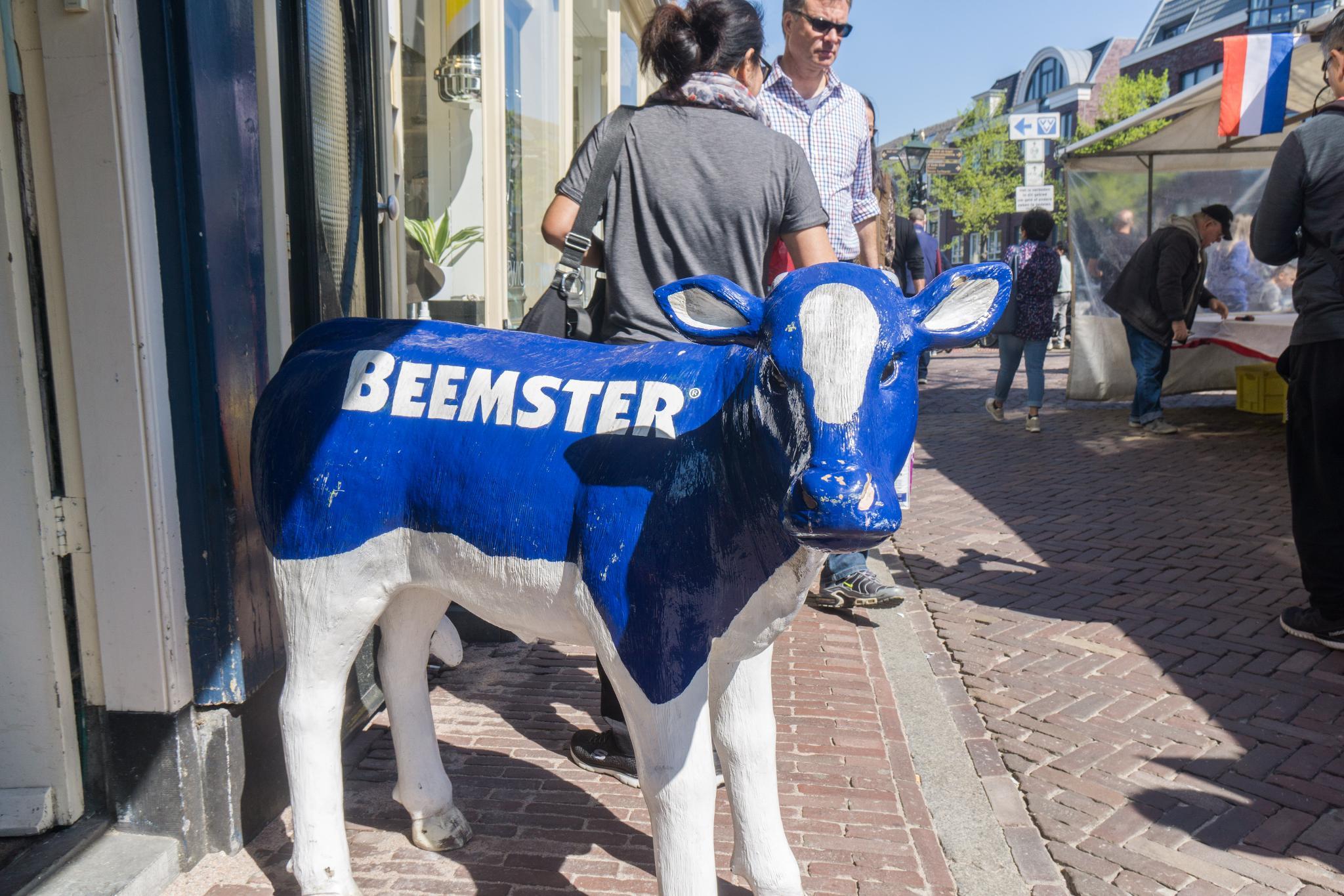 【荷蘭印象】體驗道地的荷式風情 — Alkmaar 起司市集 散步路線整理 31