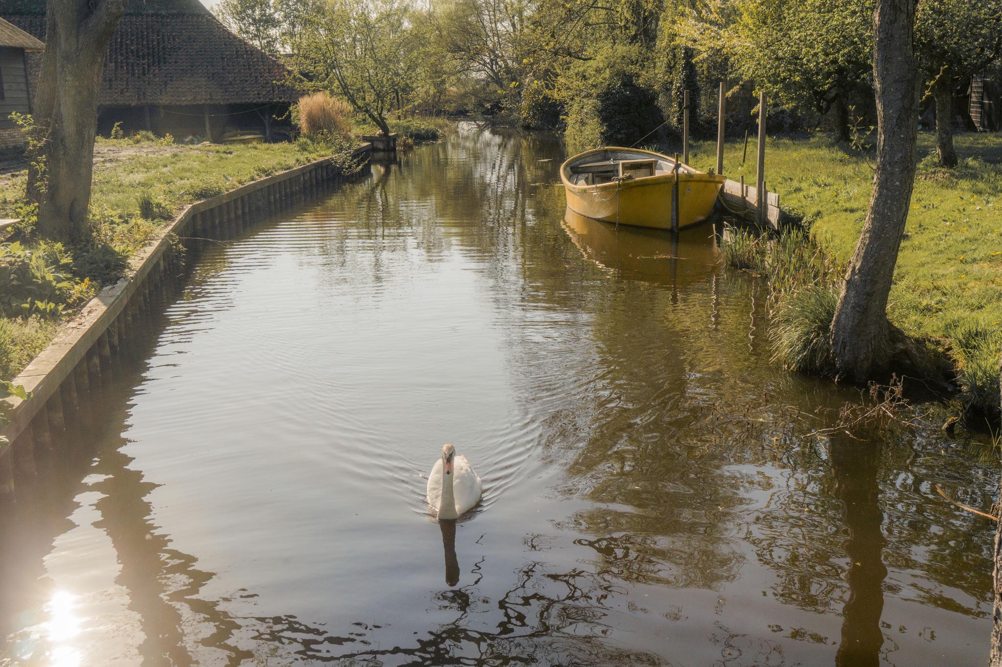 【荷蘭印象】羊角村 Giethoorn — 上帝遺落人間的世外桃源 47