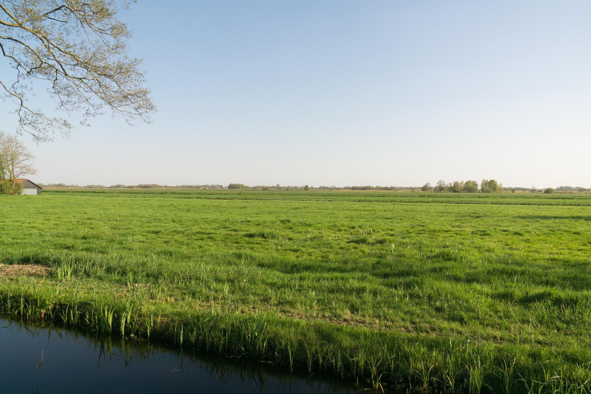 【荷蘭印象】羊角村 Giethoorn — 上帝遺落人間的世外桃源 37