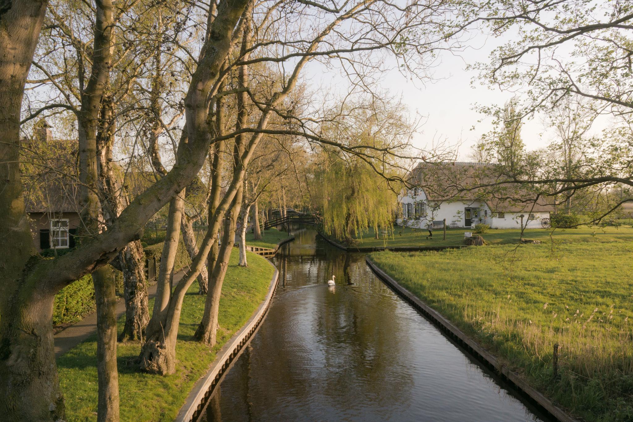 【荷蘭印象】羊角村 Giethoorn — 上帝遺落人間的世外桃源 55