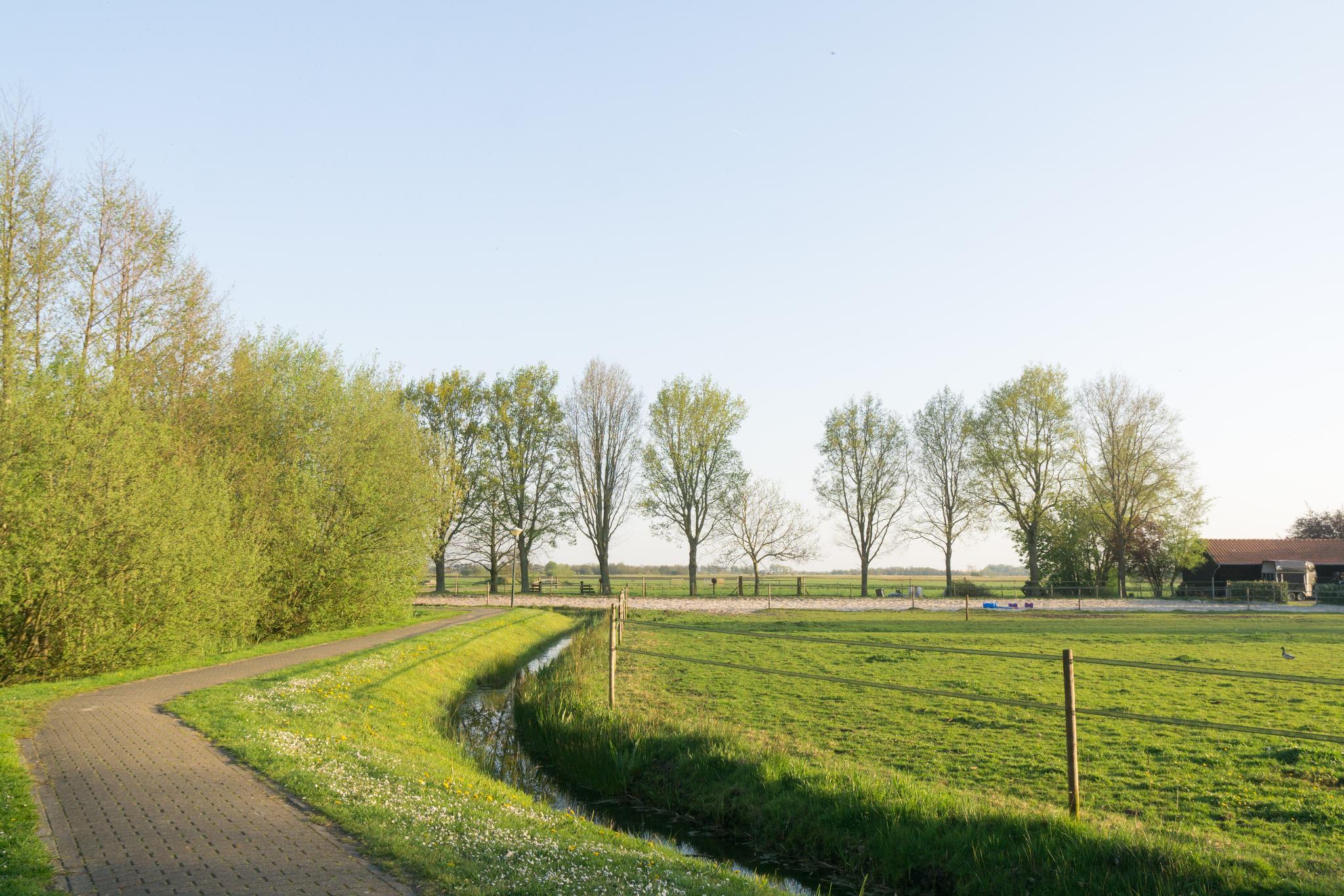 【荷蘭印象】羊角村 Giethoorn — 上帝遺落人間的世外桃源 36