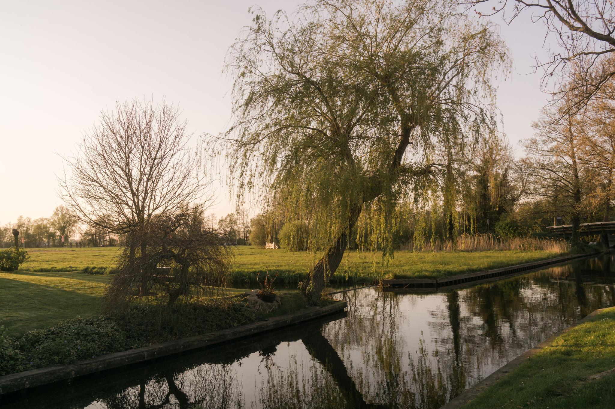 【荷蘭印象】羊角村 Giethoorn — 上帝遺落人間的世外桃源 58