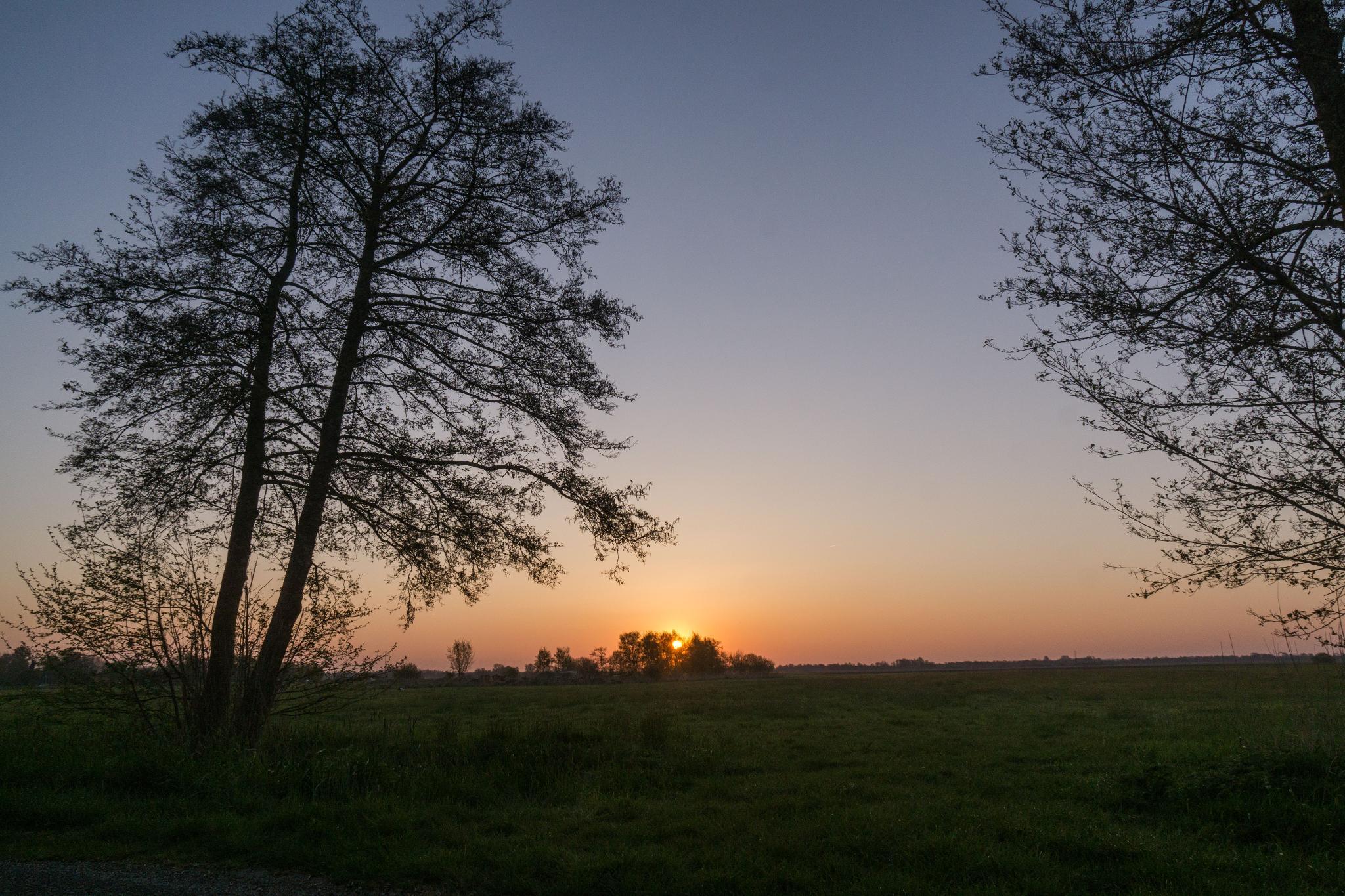 【荷蘭印象】羊角村 Giethoorn — 上帝遺落人間的世外桃源 60