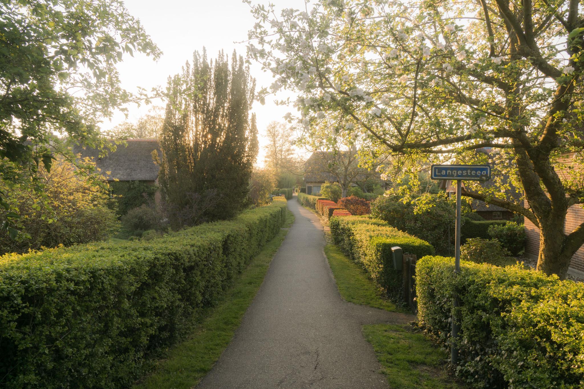 【荷蘭印象】羊角村 Giethoorn — 上帝遺落人間的世外桃源 32