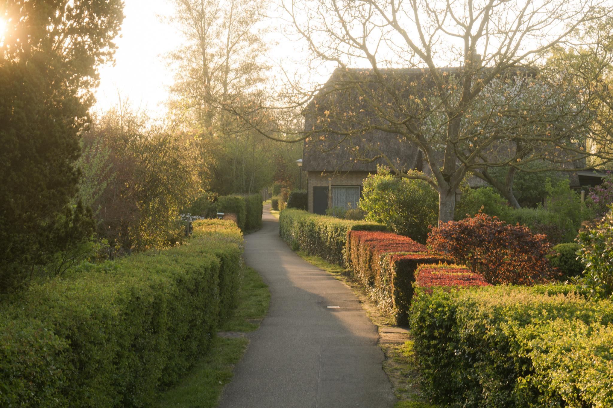 【荷蘭印象】羊角村 Giethoorn — 上帝遺落人間的世外桃源 33