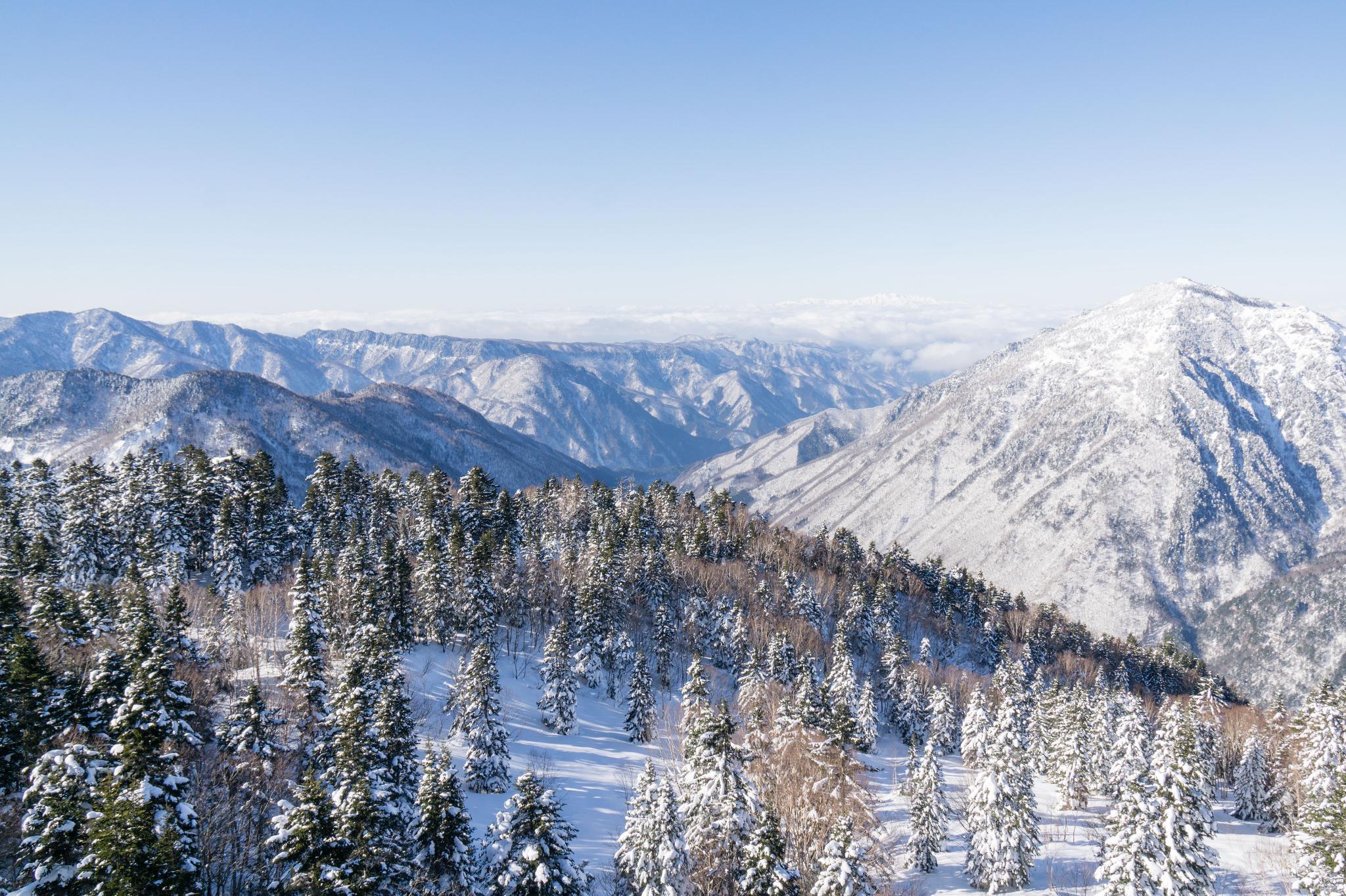 【岐阜】超級推薦!奧飛驒溫泉鄉的冬季戀歌 ~ 新穗高纜車雪景攻略 98