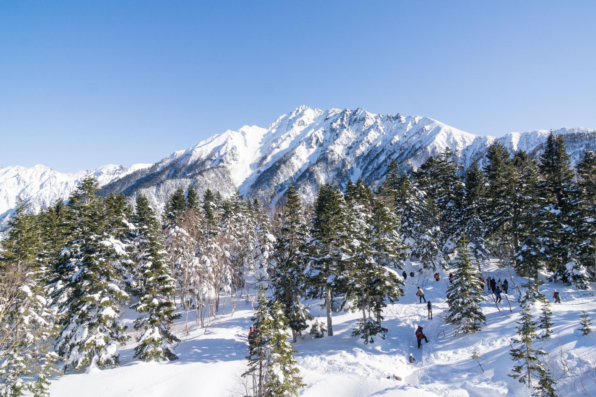 【岐阜】超級推薦!奧飛驒溫泉鄉的冬季戀歌 ~ 新穗高纜車雪景攻略 103