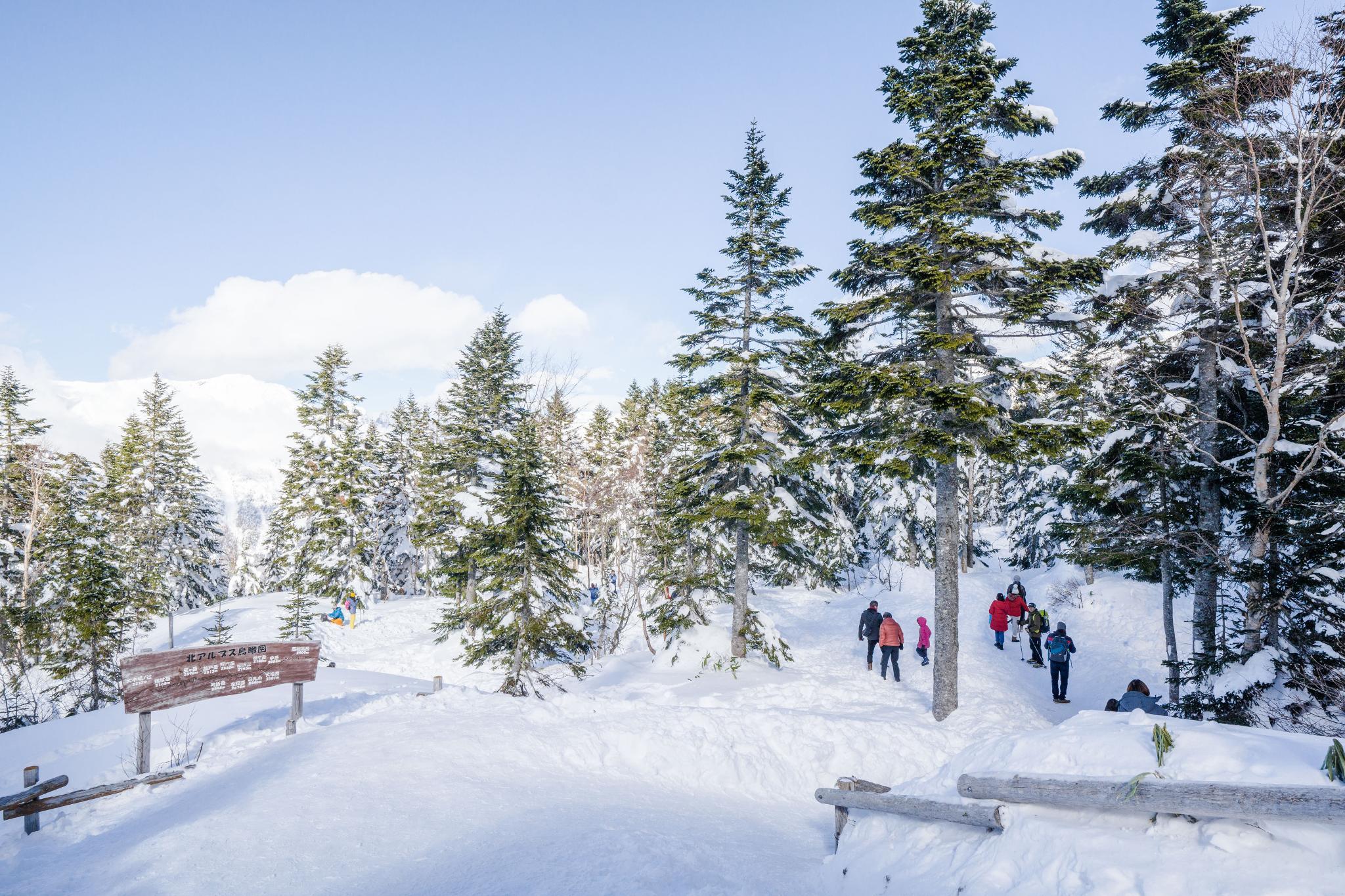 【岐阜】超級推薦!奧飛驒溫泉鄉的冬季戀歌 ~ 新穗高纜車雪景攻略 107
