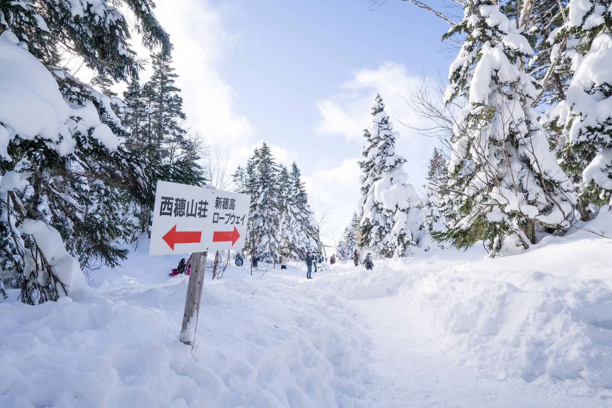 【岐阜】超級推薦!奧飛驒溫泉鄉的冬季戀歌 ~ 新穗高纜車雪景攻略 115