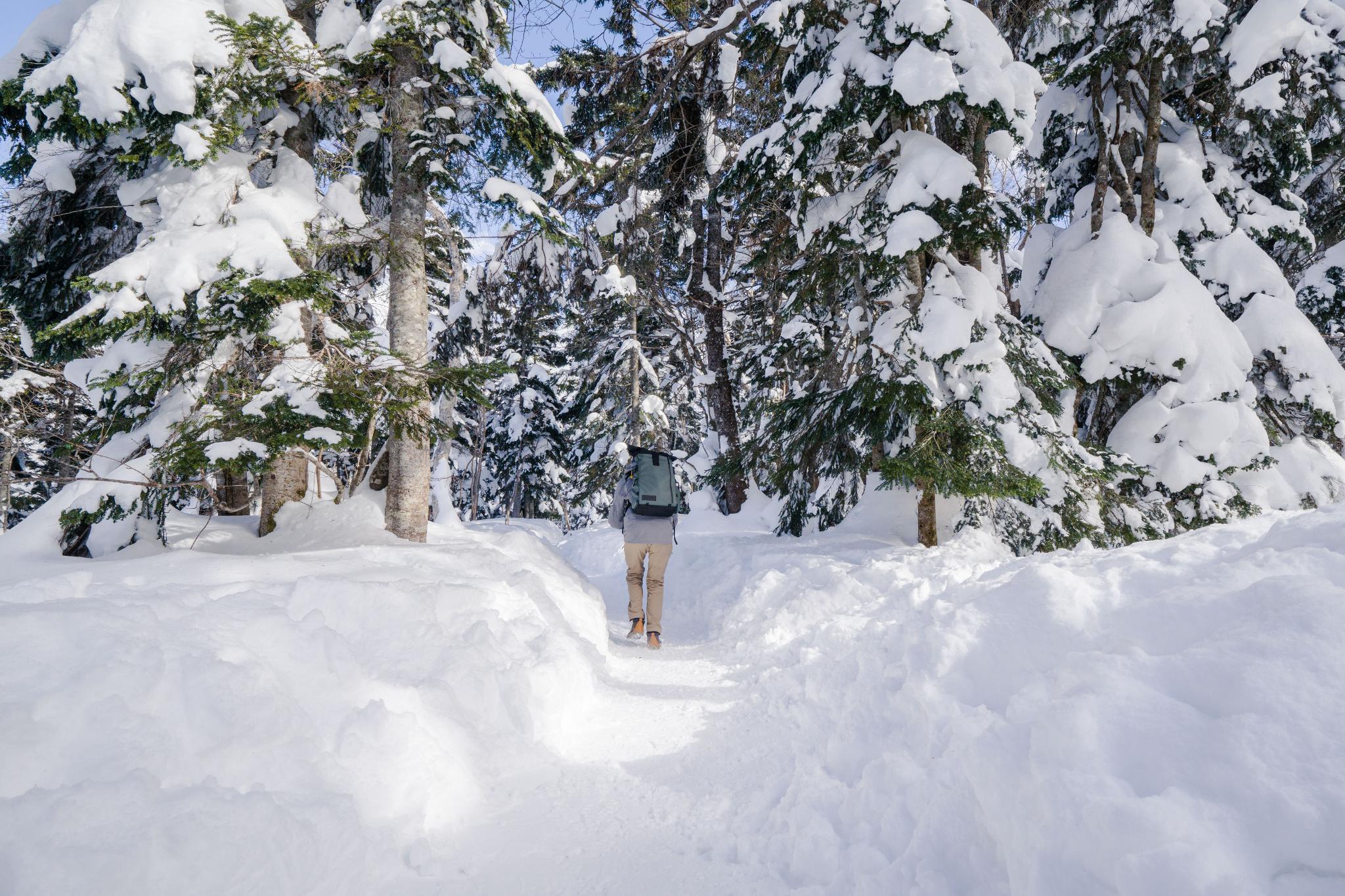 【岐阜】超級推薦!奧飛驒溫泉鄉的冬季戀歌 ~ 新穗高纜車雪景攻略 117